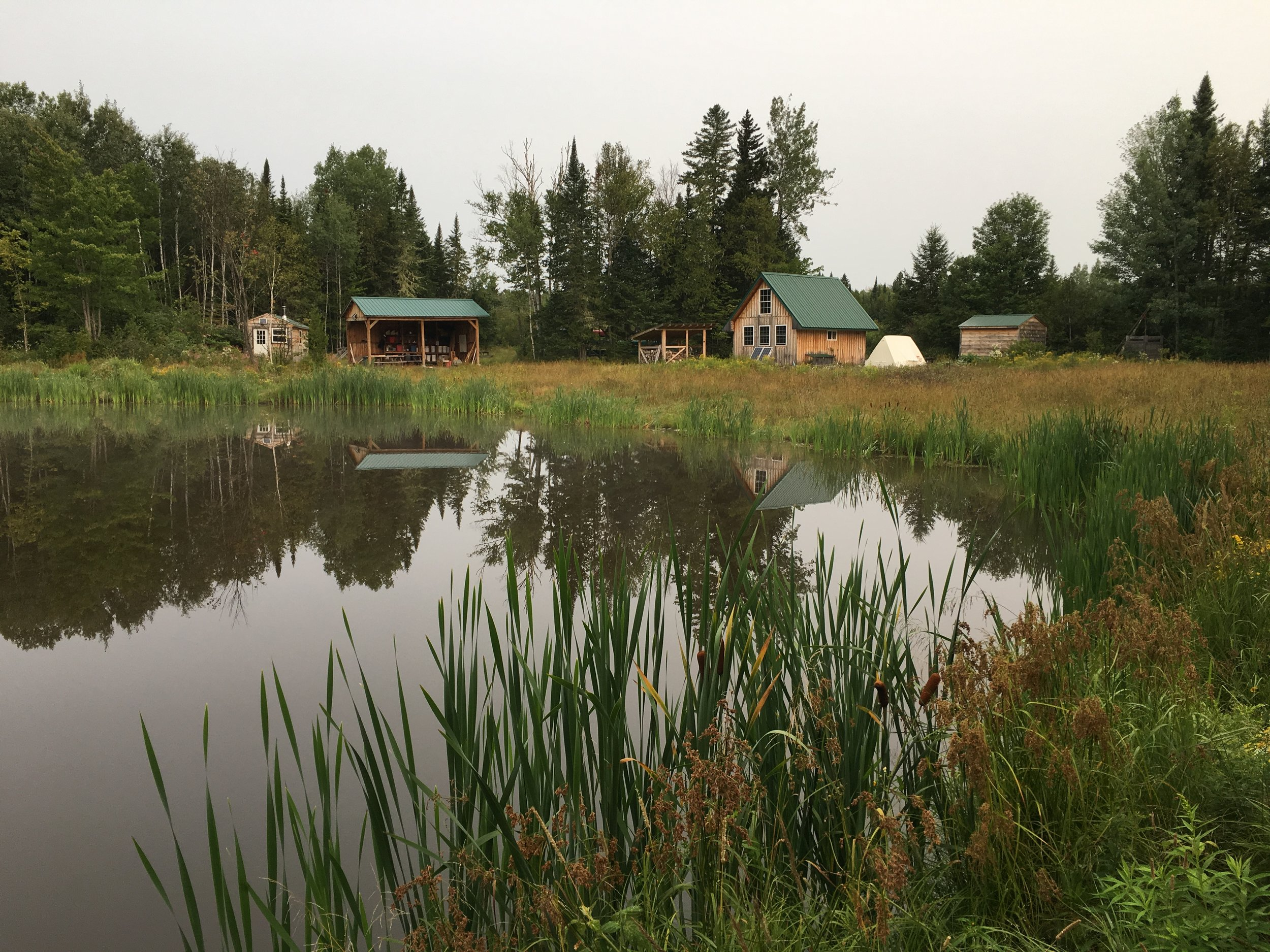 The pond behind the guide shack is stocked with fish and home to frogs and water bugs.