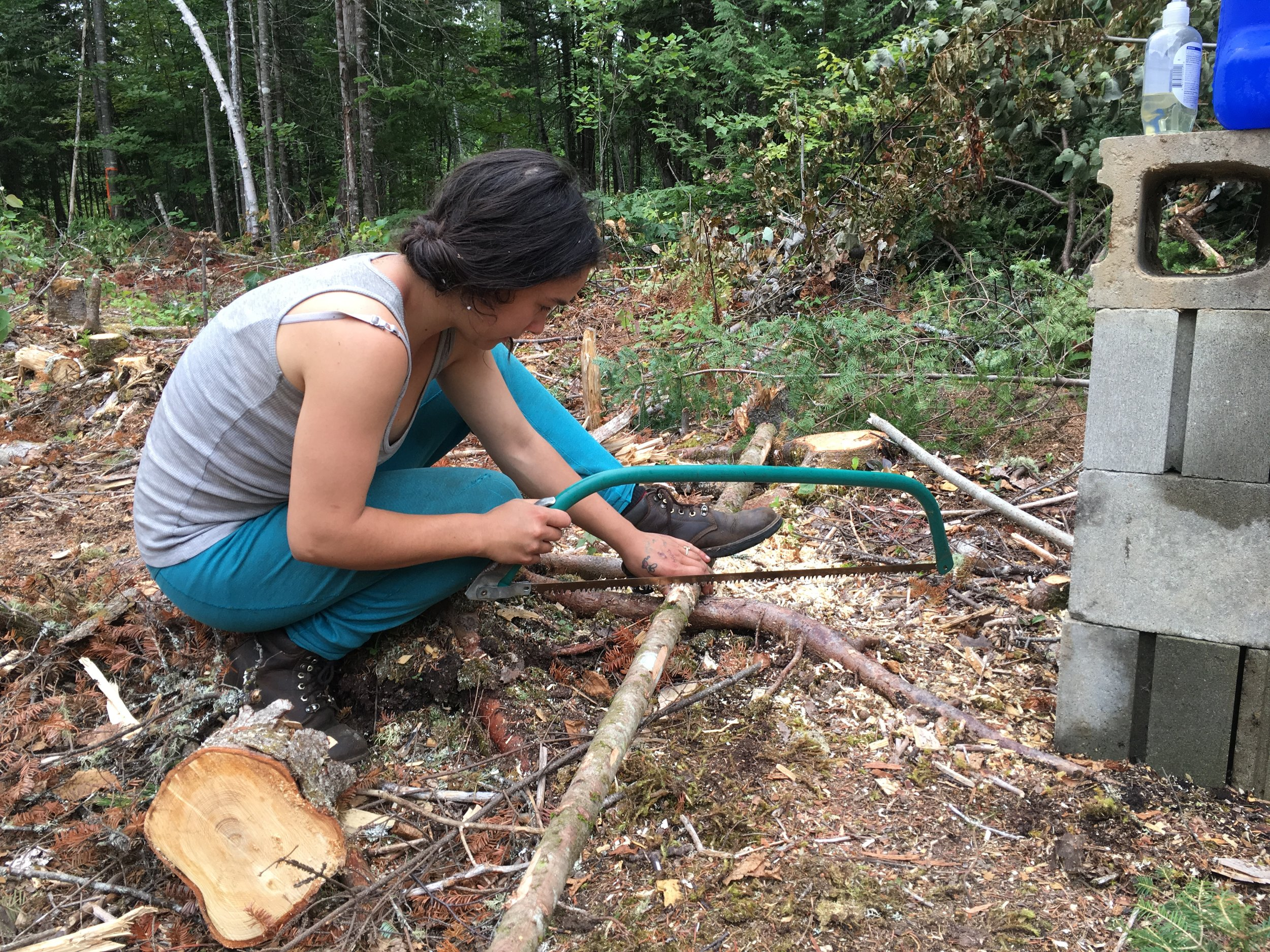Molly uses a hand saw to carve an X in a pine trunk to make a pot hanger.