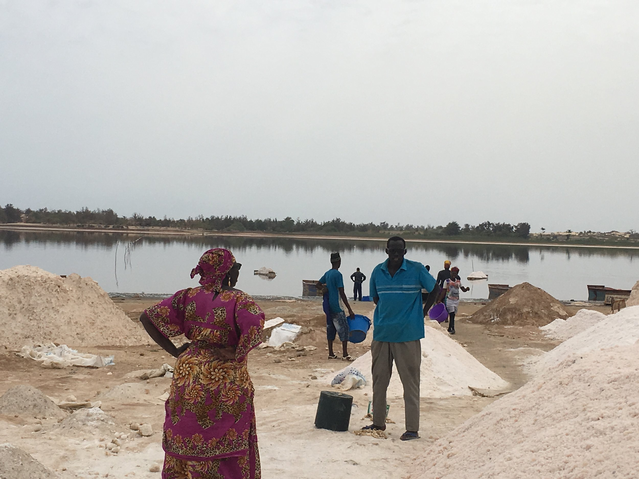 Women and men work to scoop the salt from the bottom of Lake Retba and pile it onshore for bagging and distribution.