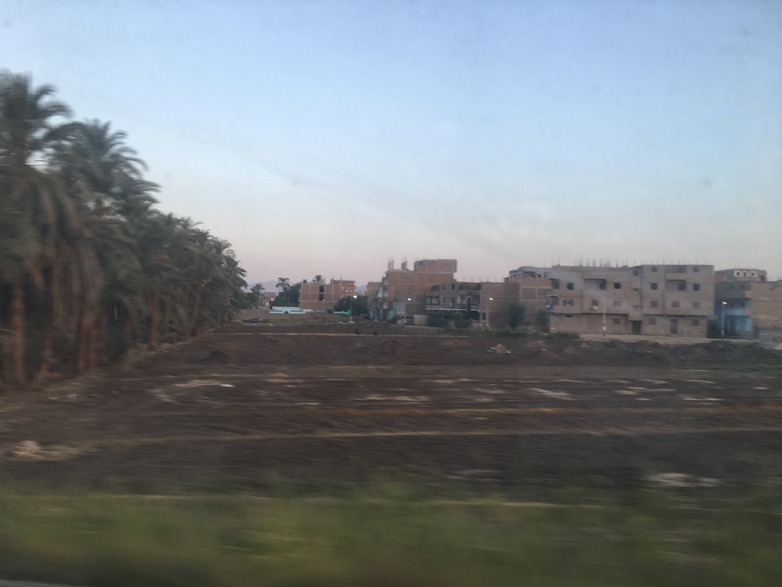 The Egyptian country side flew by outside the train window.