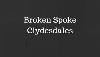 Broken Spoke.jpg
