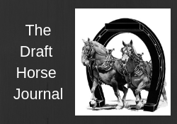 Draft Horse Journal .png