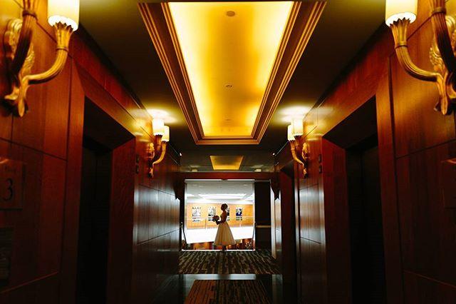 Natasha on her way to the ceremony. #bride #groom #wedding #love #stunningbride. #fourseasons #sydneyweddingphotographer  #balmoralweddingphotographer #atholhall #hillsweddingphotographer #aipp #aippaccreditedprofessionalphotographer