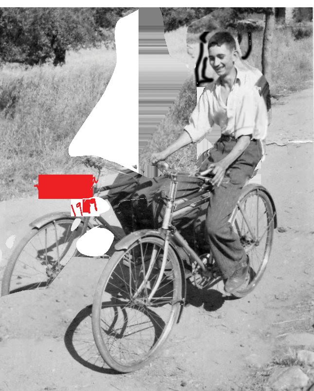 Pete_bike_5.png