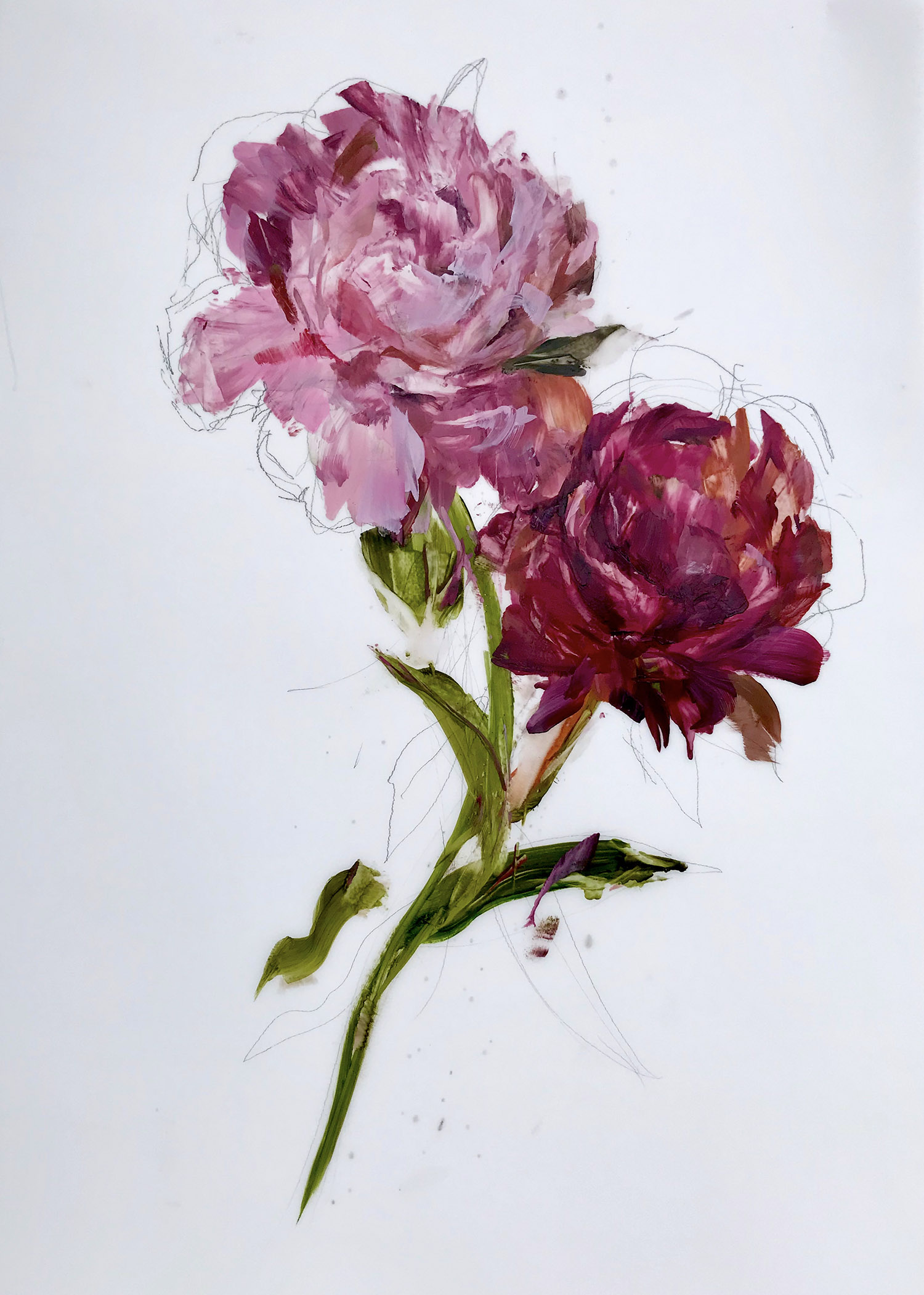 Madeleine Lamont, Effloresce 6, oil on mylar, 36 x 24 in.