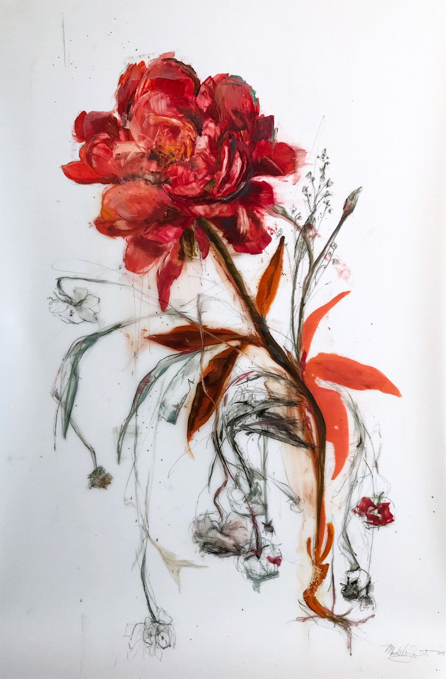 Madeleine Lamont, Coral Bloom with Sketch, oil on mylar, 54 x 36 in.