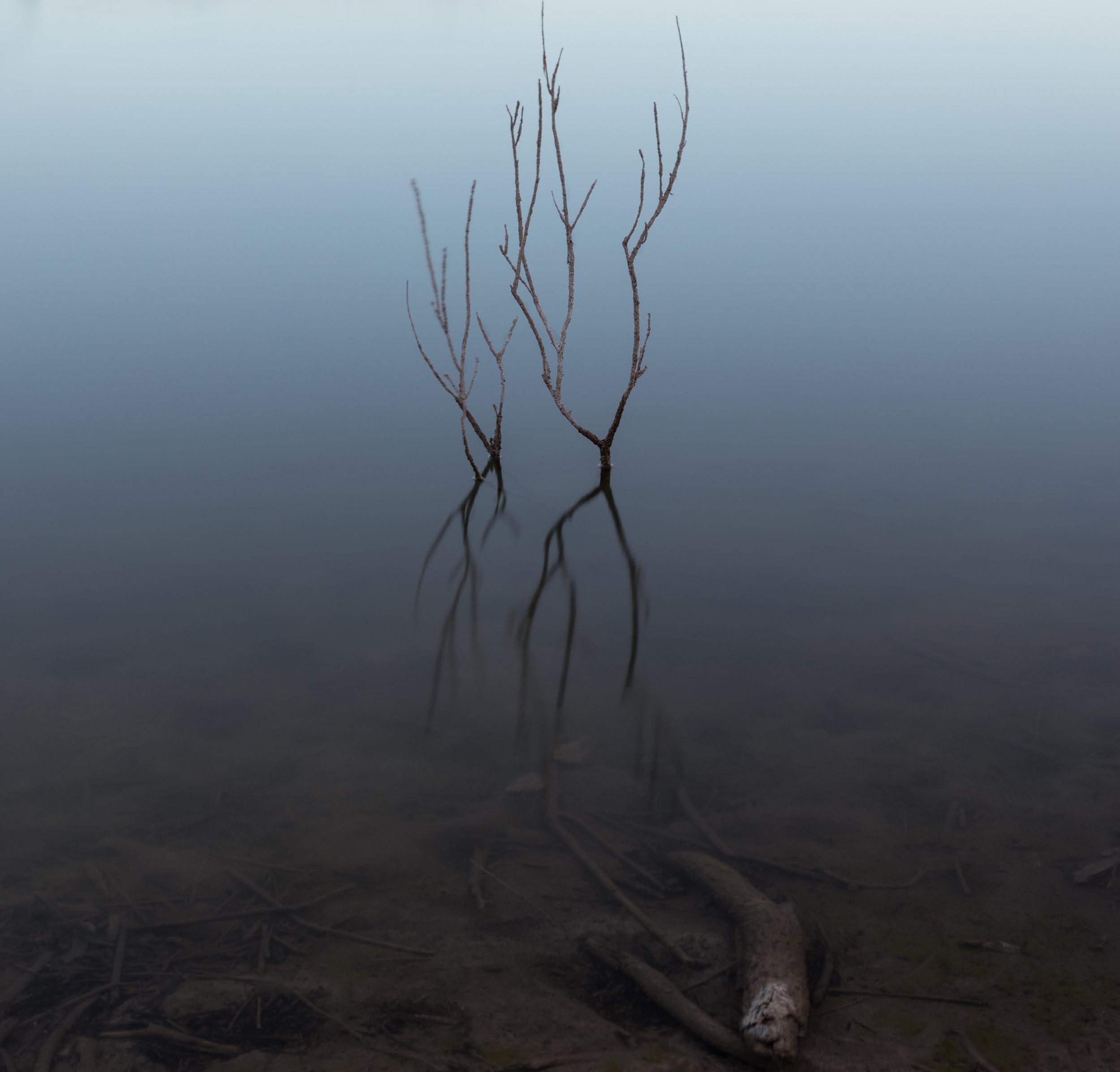 creekspring1nw.JPG