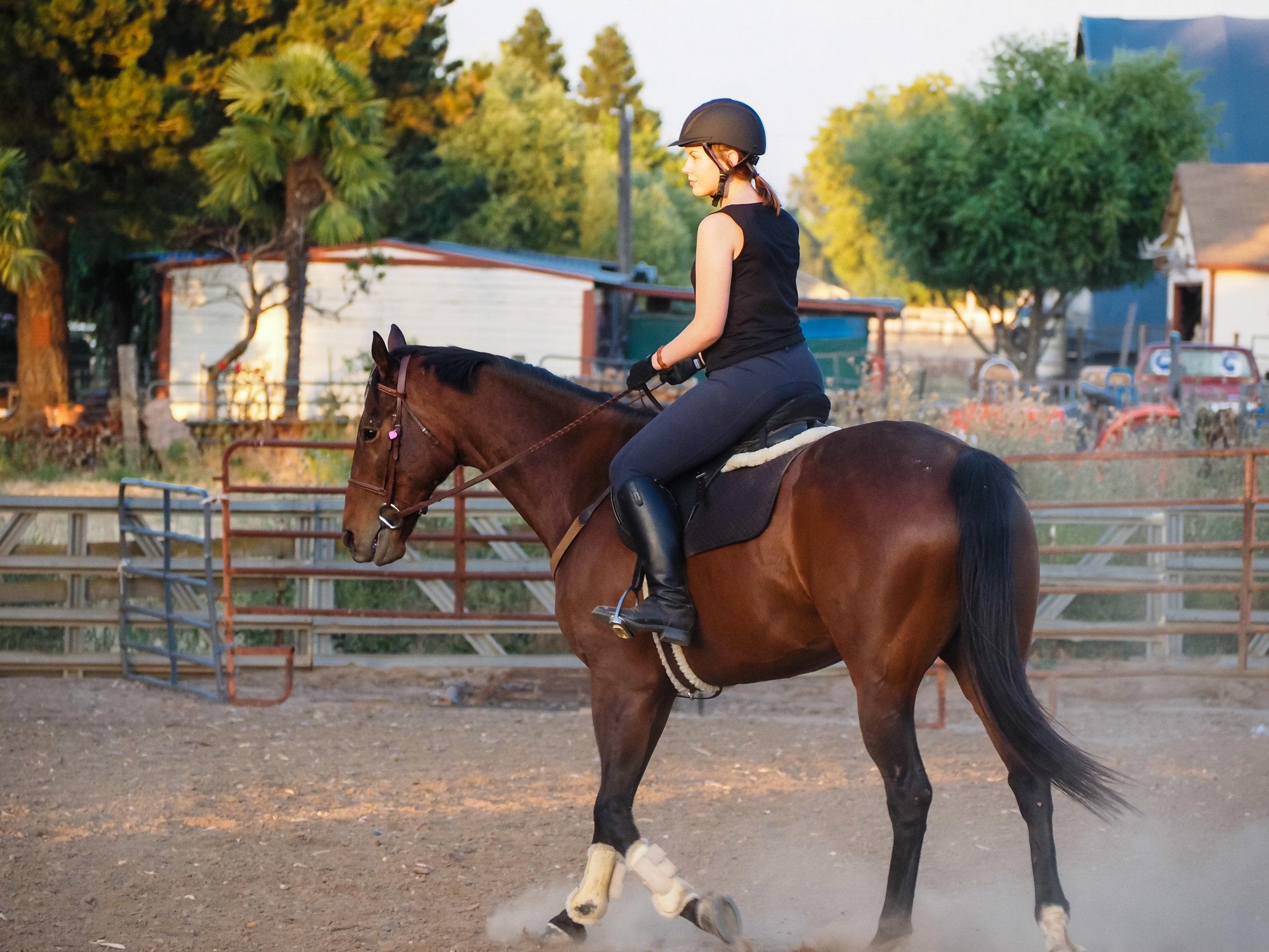 mikey-ottb-back-to-riding-4.jpg