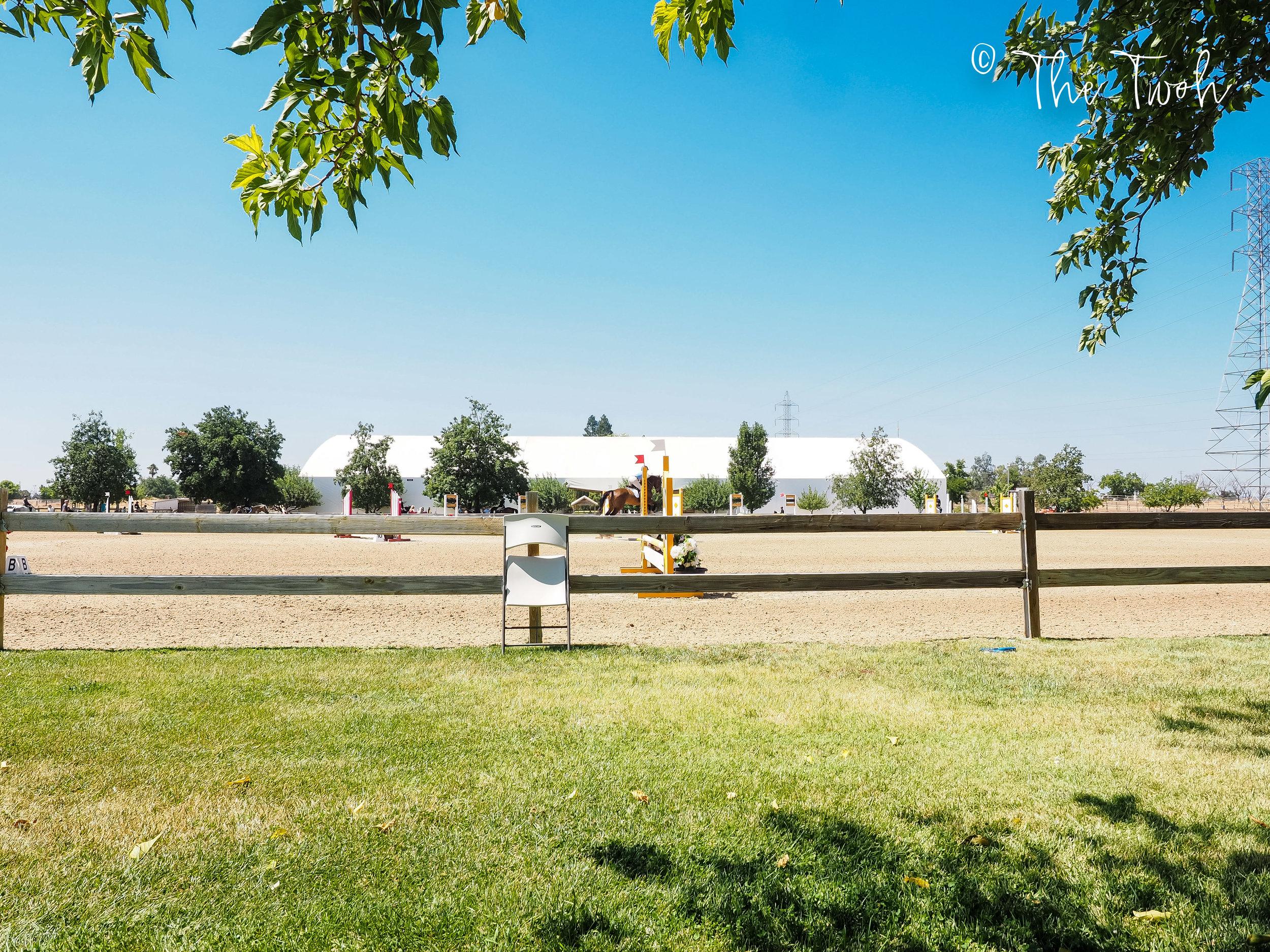 horse-show-weekend-4.jpg
