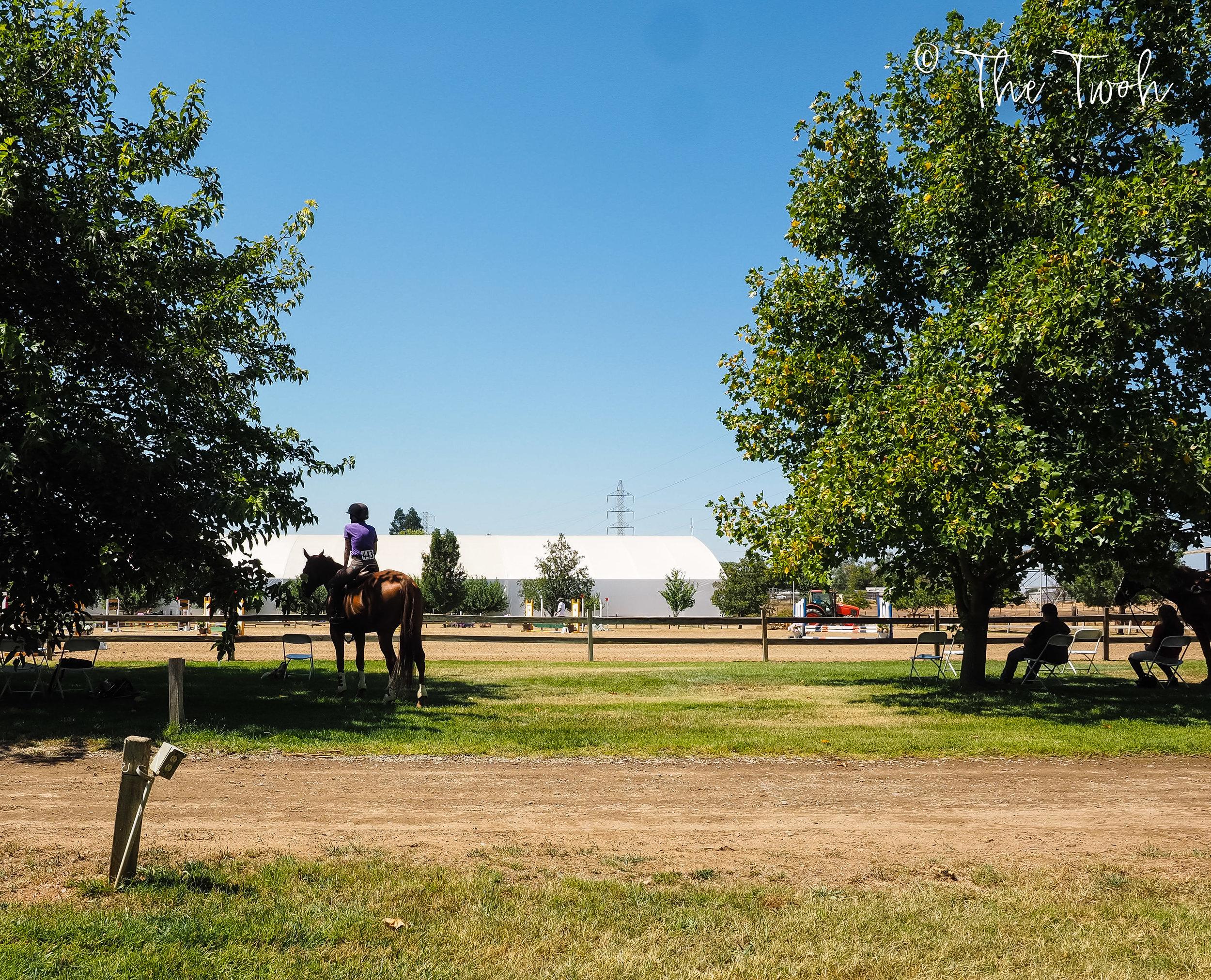 horse-show-weekend.jpg