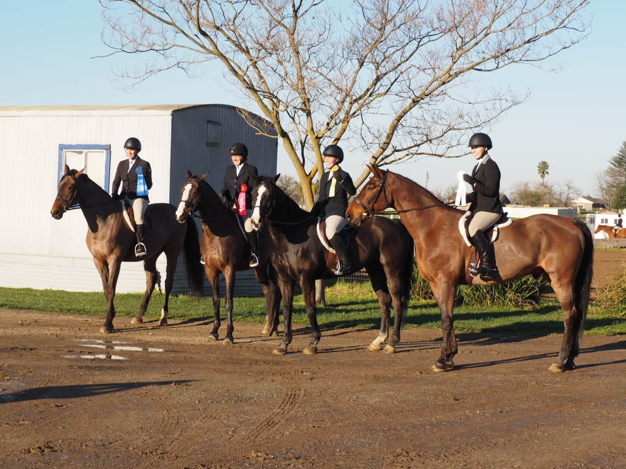 Top 4 U/S were all ladies from my barn. We got 4th and Leo could not look more proud to pose for a picture. Other horses? Not so much.