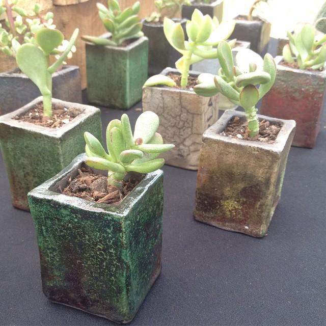 Extruded handbuilt raku succulent pot wedding favors
