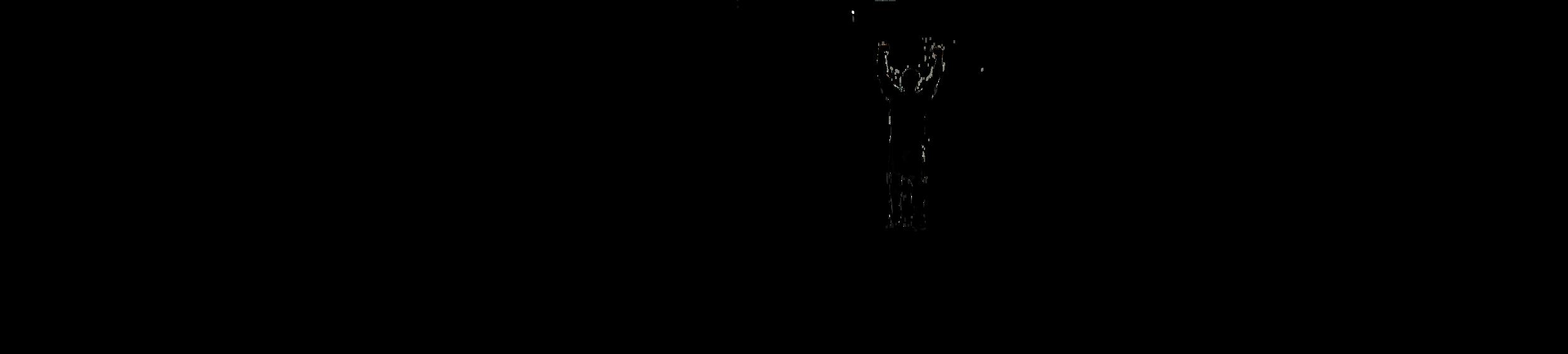 NAD websote logo 2.png