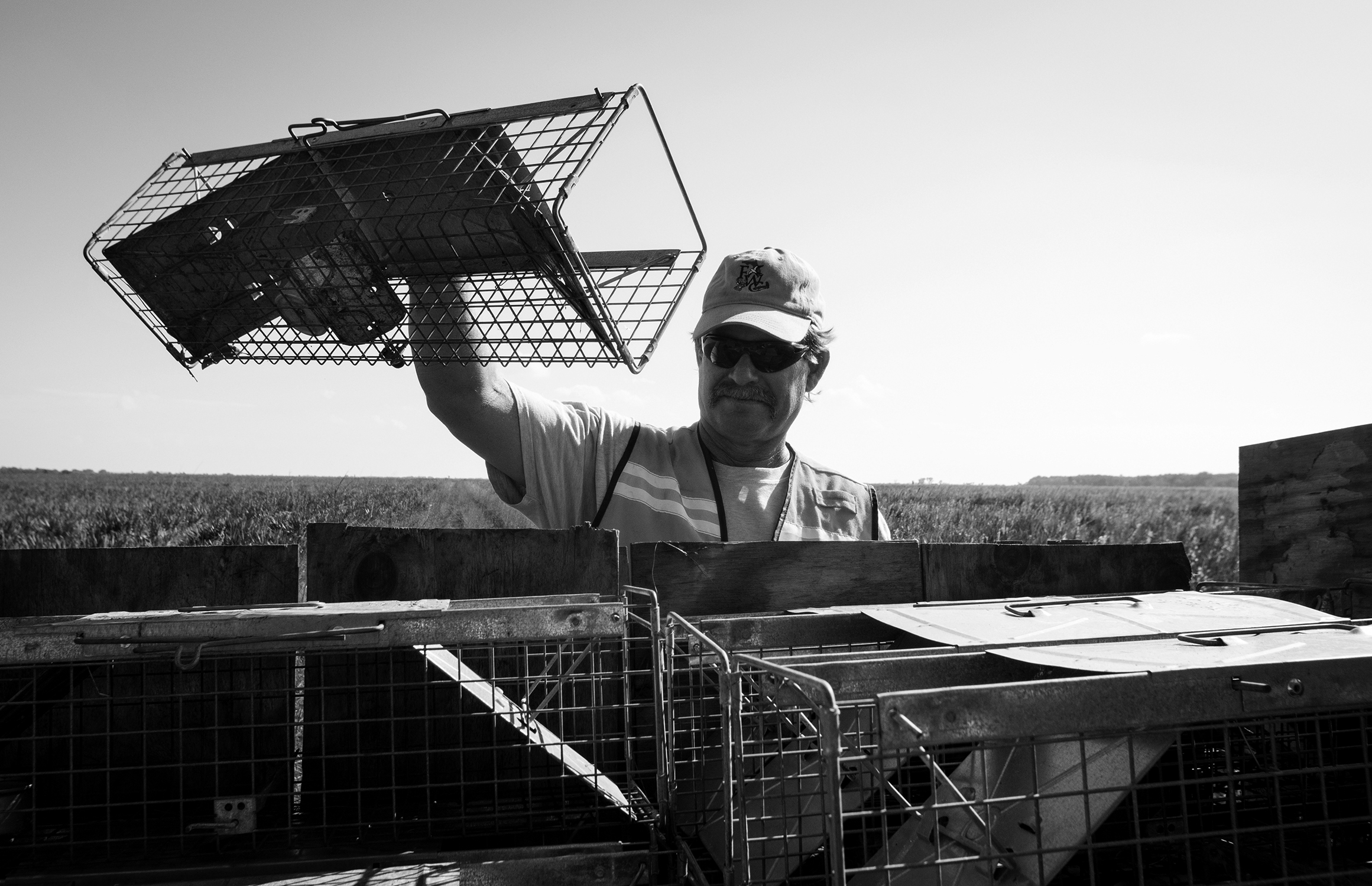 Empty cages are loaded back on the vehicle.