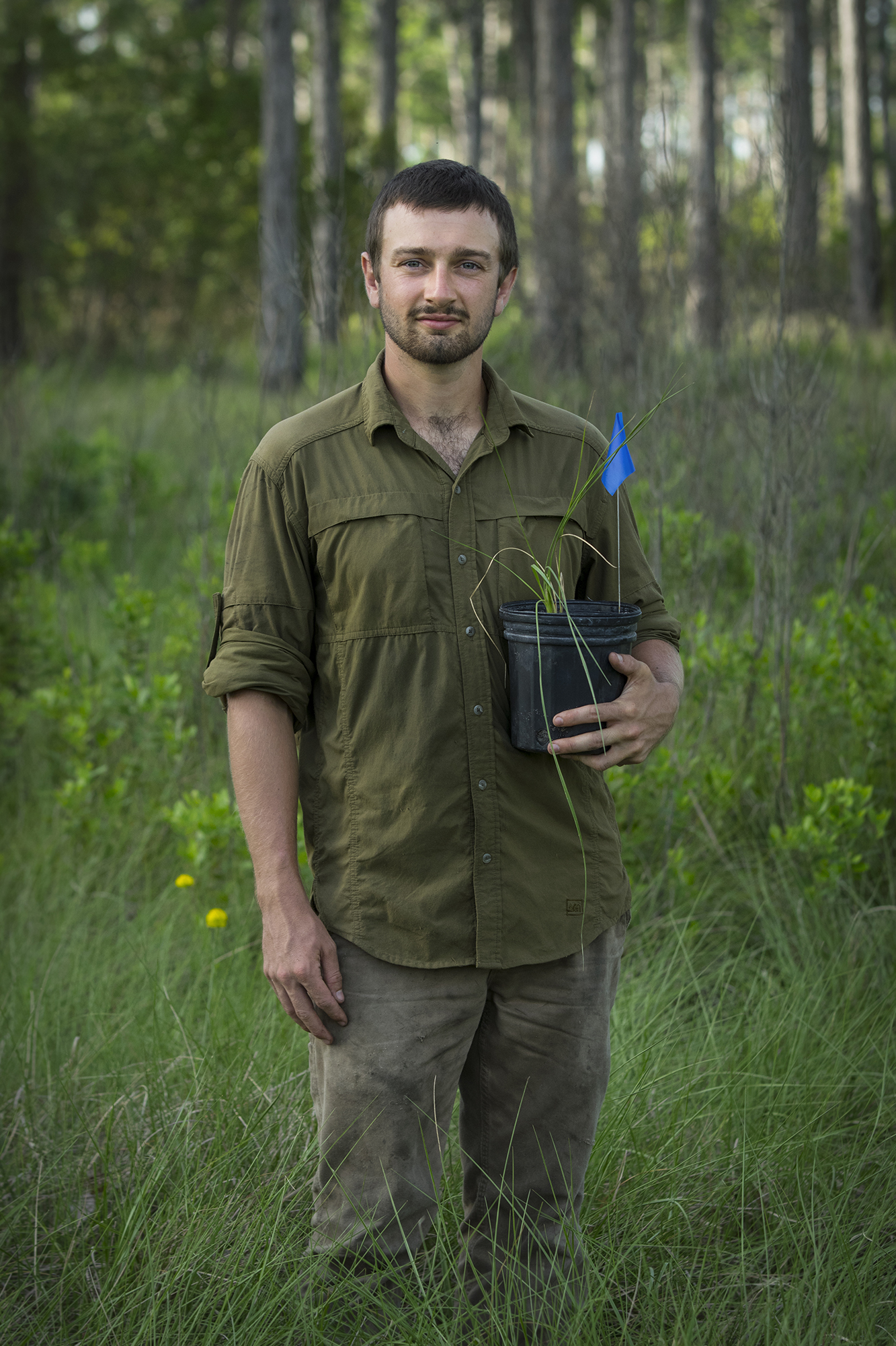 Michael Sinclair    Plant Ecologist (Cutthroat Grass)   Archbold Reserve  2017/6/24