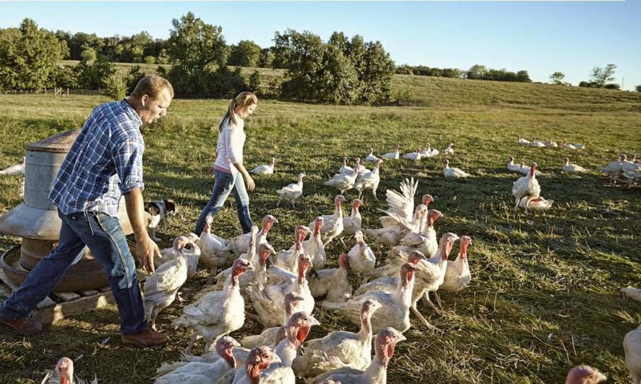 Buttonwood Farm - California, MO