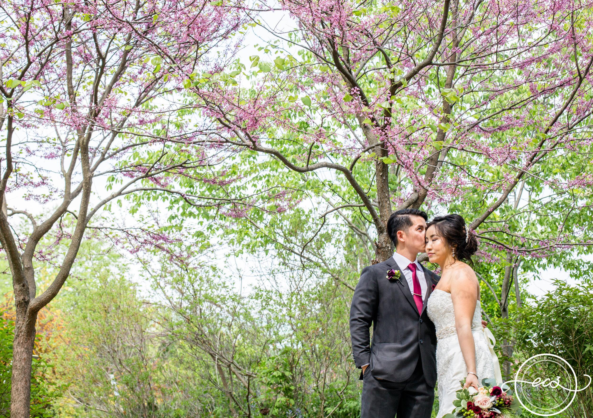 Toronto Edwards Garden and Intimate Vietnamese Wedding16.jpg