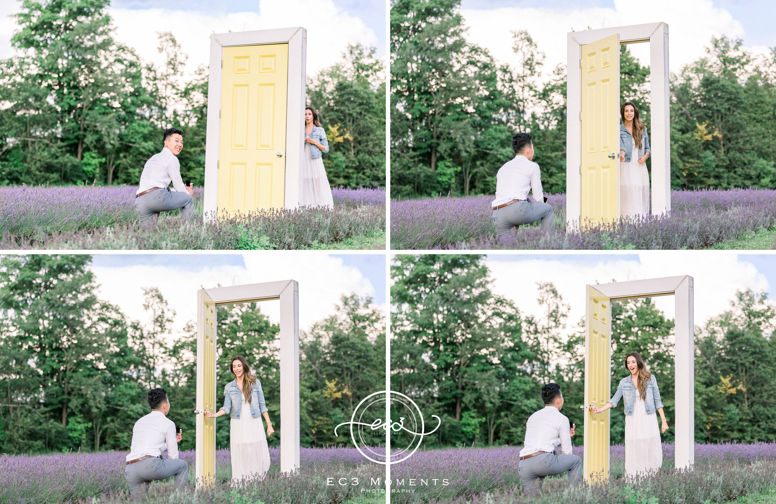 Laura & Ryan Terre Bleu Summer Surprise Proposal 6.jpg