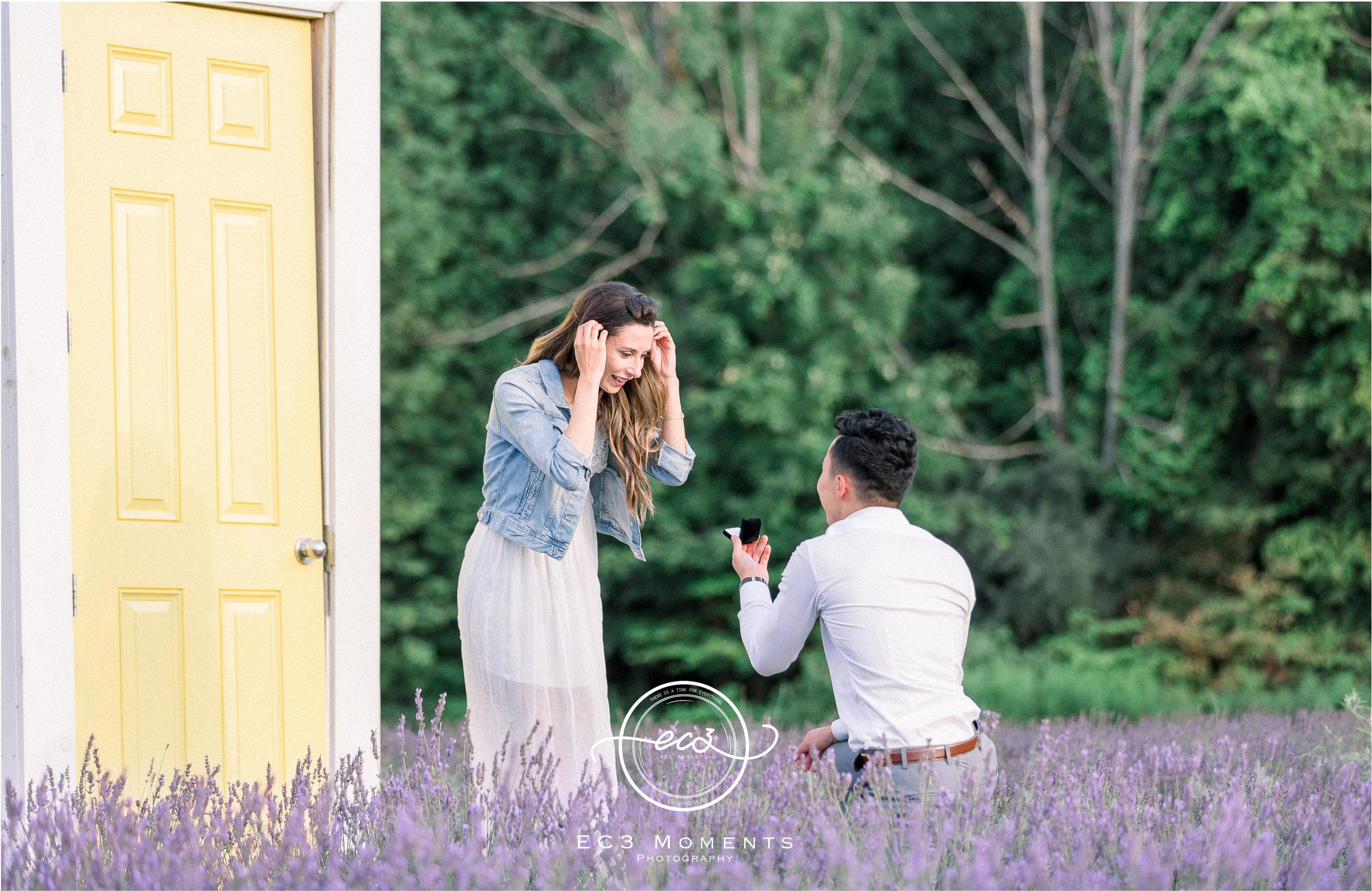 Laura & Ryan Terre Bleu Summer Surprise Proposal 9.jpg