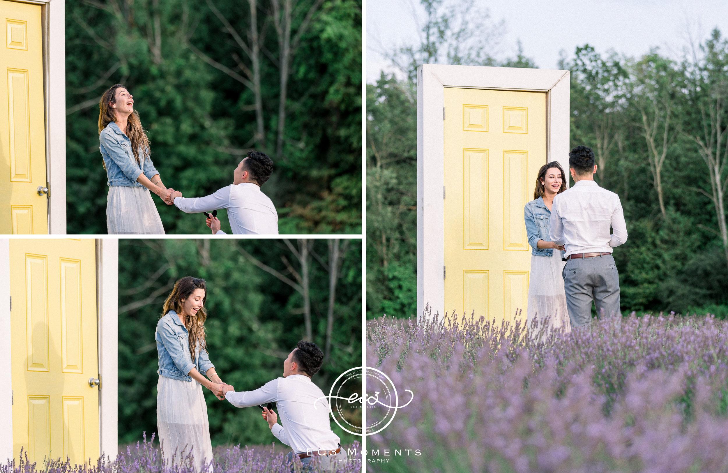 Laura & Ryan Terre Bleu Summer Surprise Proposal 10.jpg
