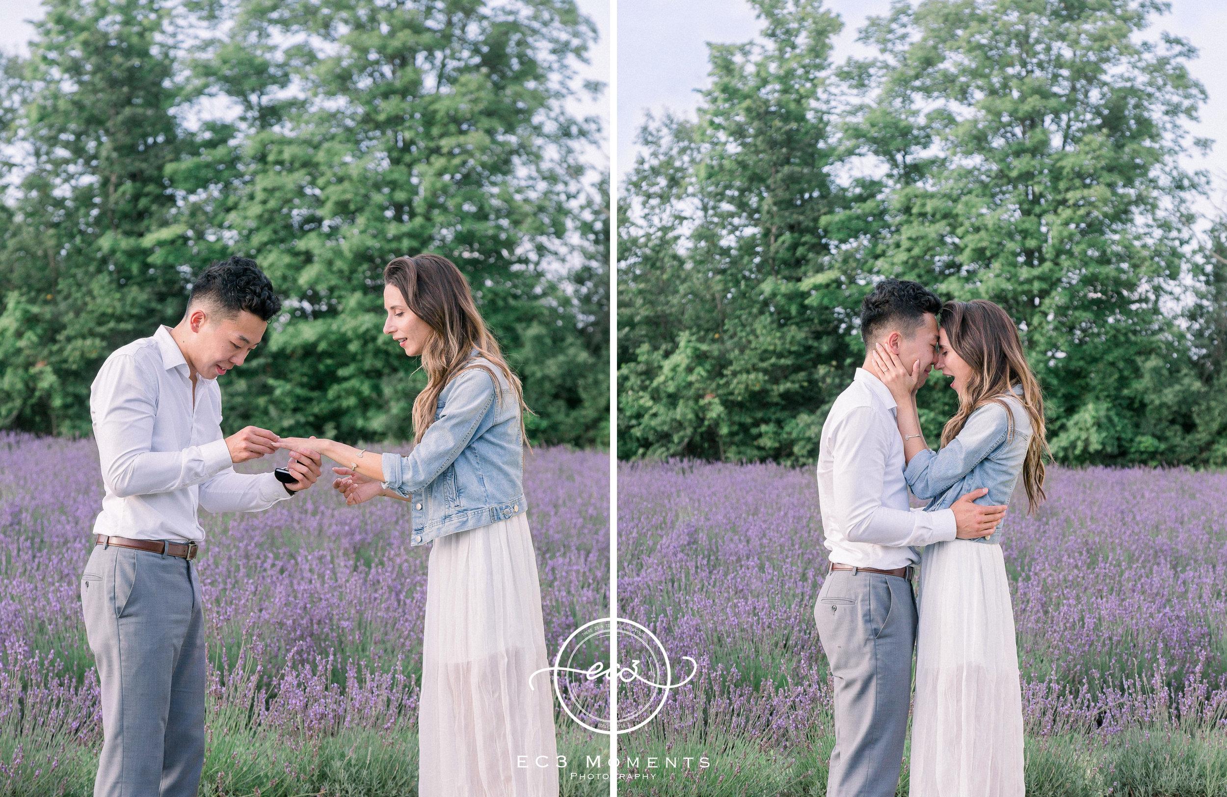 Laura & Ryan Terre Bleu Summer Surprise Proposal 11.jpg