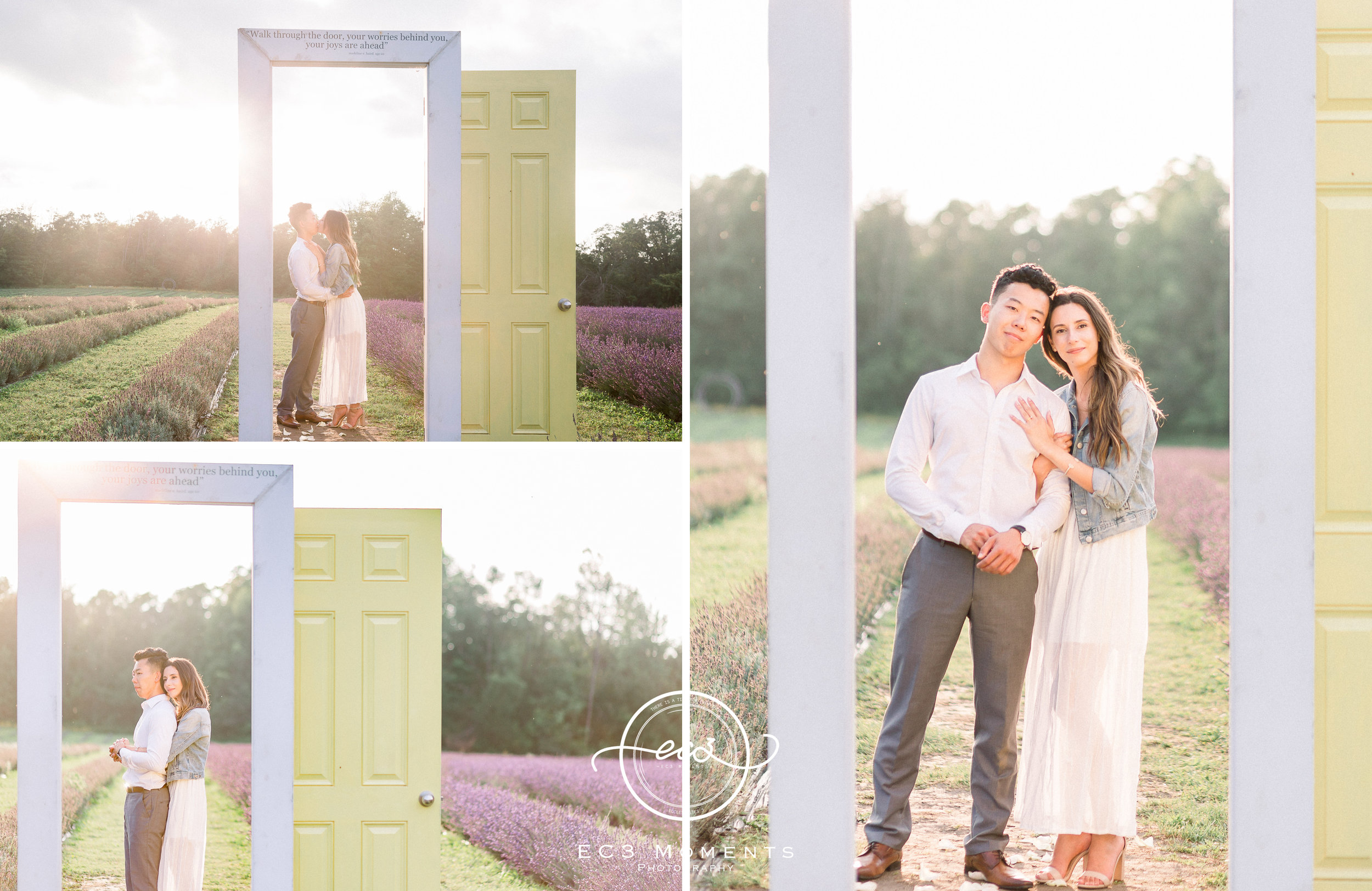 Laura & Ryan Terre Bleu Summer Surprise Proposal 15.jpg