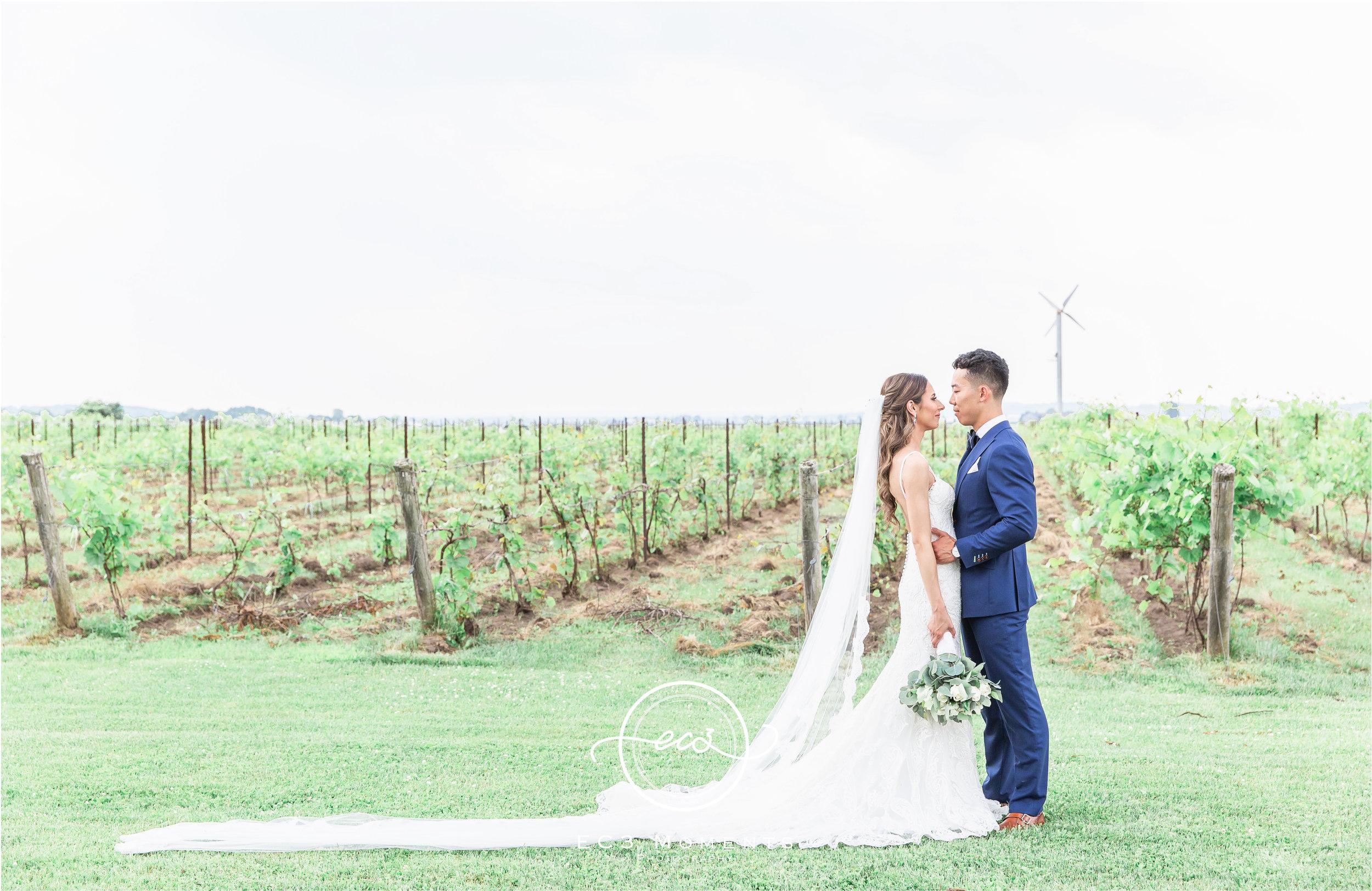 Laura & Ryan Holland Marsh Wineries Wedding 30.jpg
