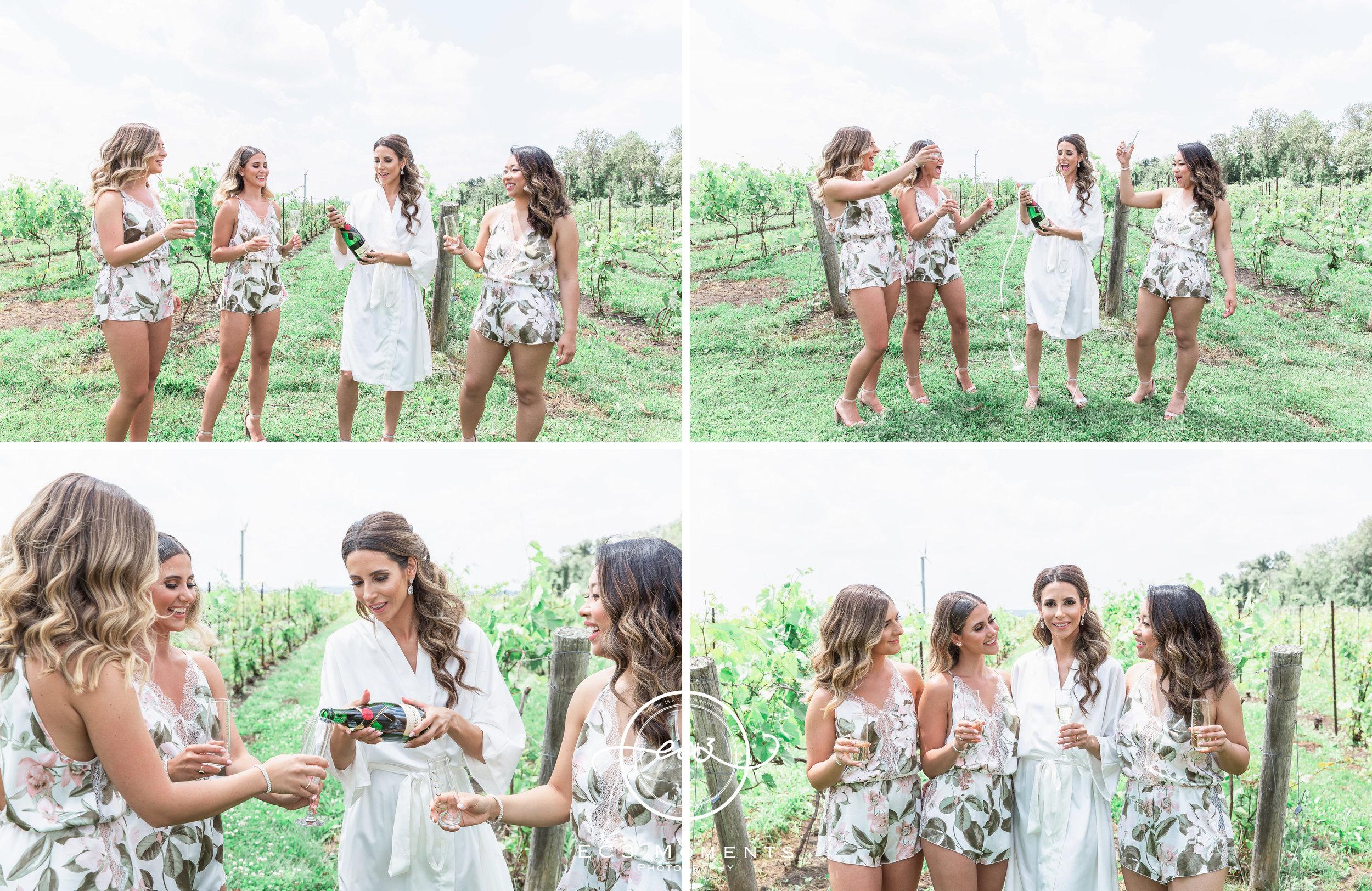 Laura & Ryan Holland Marsh Wineries Wedding 18.jpg