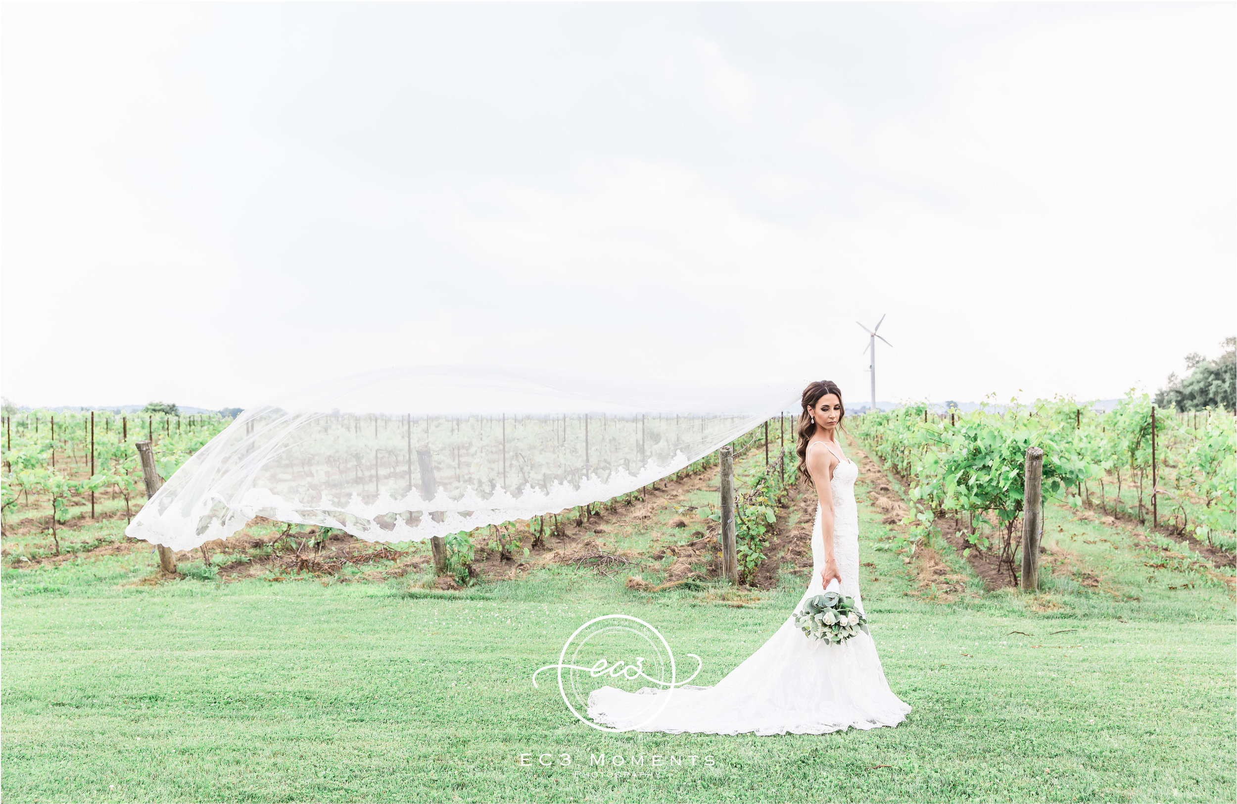 Laura & Ryan Holland Marsh Wineries Wedding 29.jpg