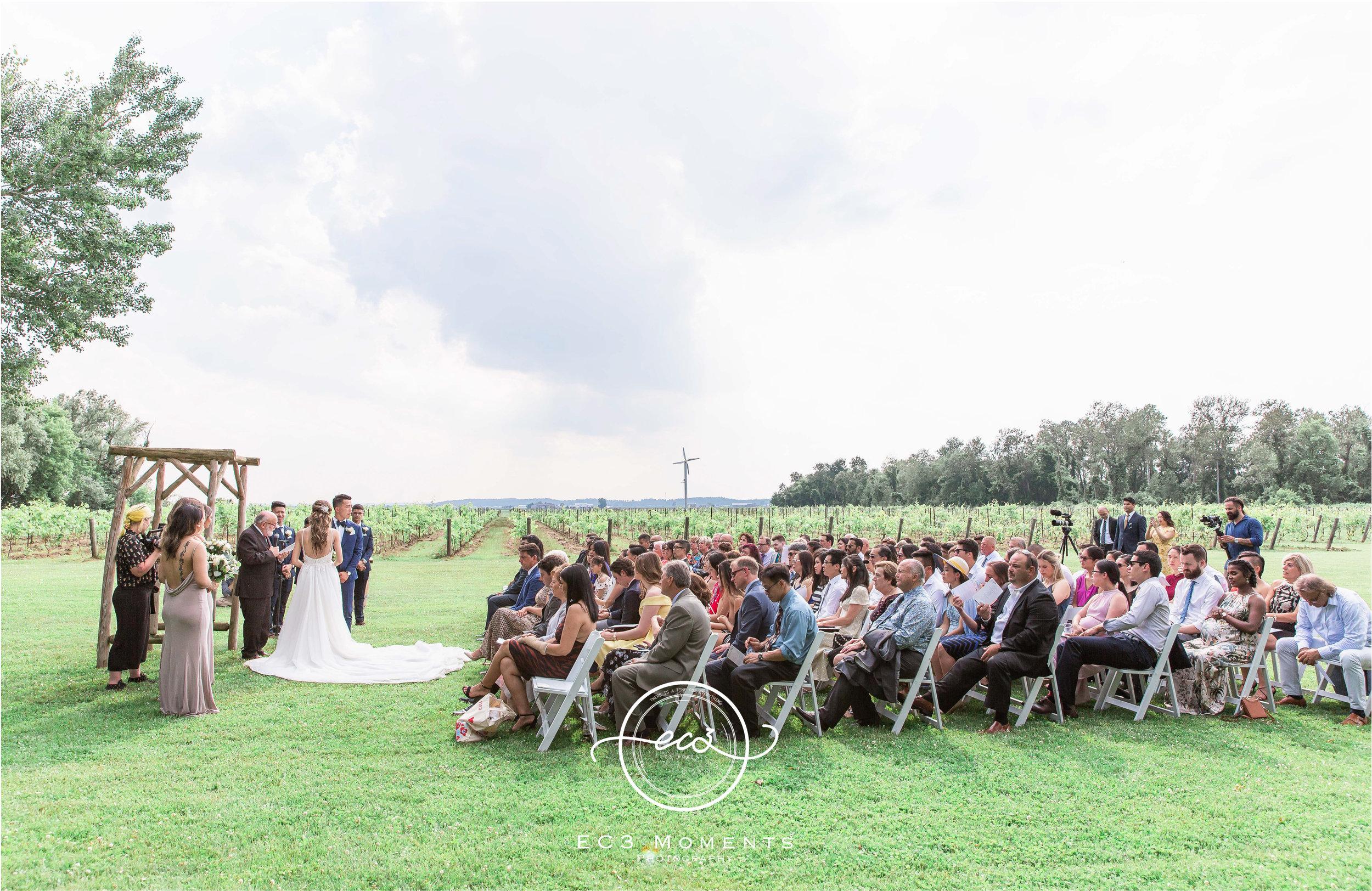 Laura & Ryan Holland Marsh Wineries Wedding 39.jpg