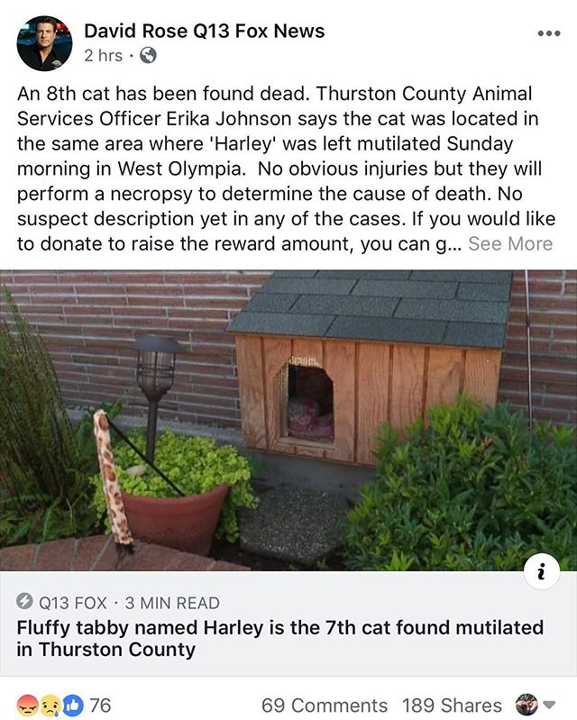 A break from my usual #veganketo posts... . THIS is happening blocks from where I live. Someone is mutilating cats and displaying their bodies. Today is makes 8, 3 just within the past three days. My meow loaf Gomez is safe inside and I can only hope that this disgusting individual is arrested. My daughters classmate is one of the devastated owners who had to be notified their cat had fallen victim to this monster. Please keep our community in your thoughts and pray this piece of garbage is apprehended quickly 🙏 #olympia #keepyourcatsinside #justice #rip #vegansofig