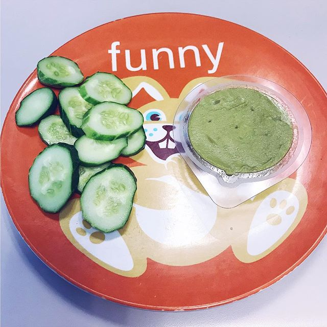 Snacks!! 🤤 Cucumbers from the @tumwaterfarmersmarket and @eatwholly classic guac 🙌 • • • • #ketowin #ketosnacks #vegano #ketovegan #ketovegetarian #lowcarbvegan #lowcarbdiet #guacamole #vegans #veganfoodporn #ketosis #simplefood #ketogains #plantbasedfood #glutenfreeketo #dairyfreeketo #sugarfree #antiinflammatory #ketomeals