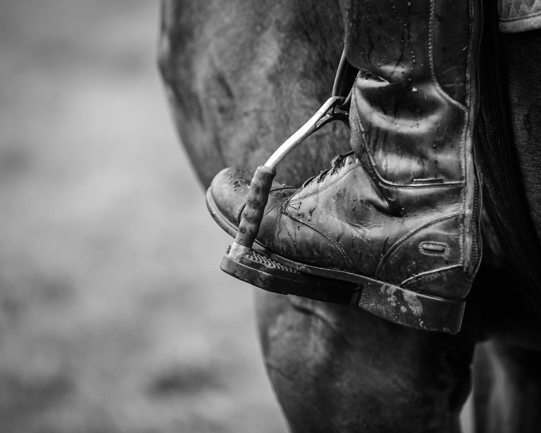 Aitken-140919-Horse Workshop-313.jpg