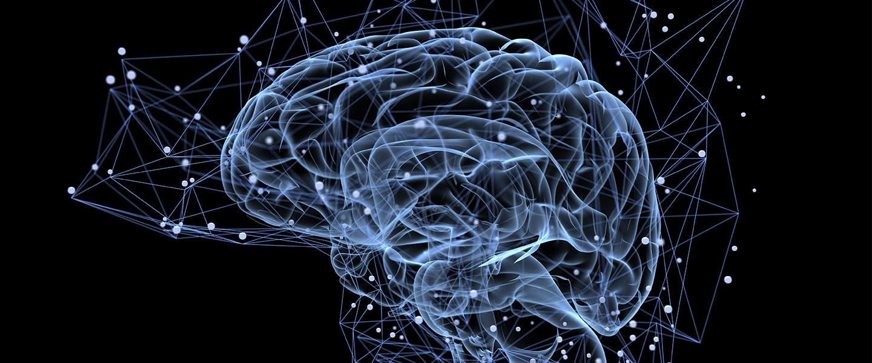 brainactivity-1440_5.jpg