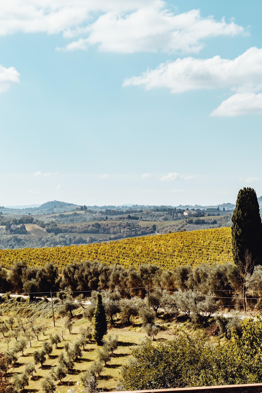 Italy-297.jpg
