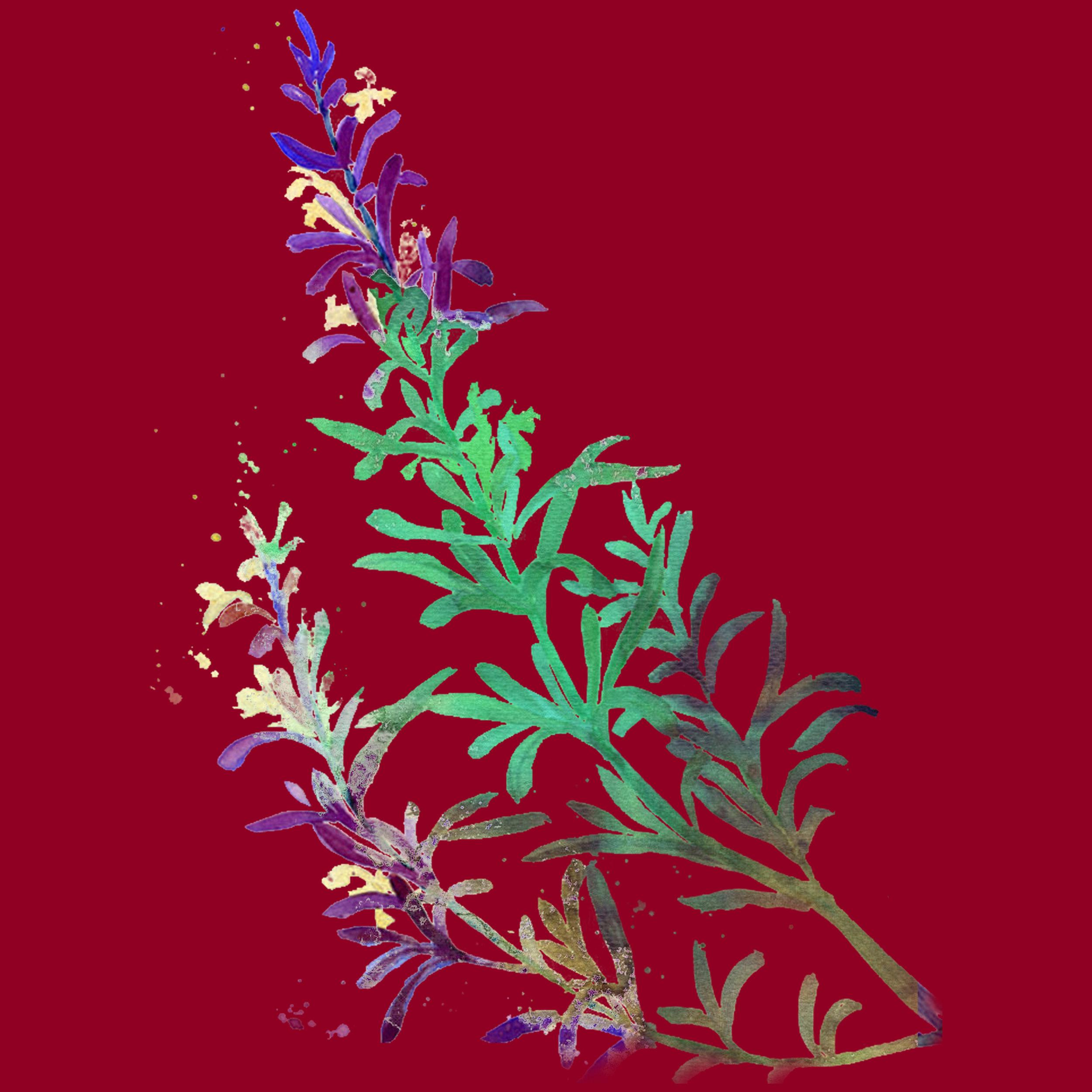 Rosemary Print.jpg