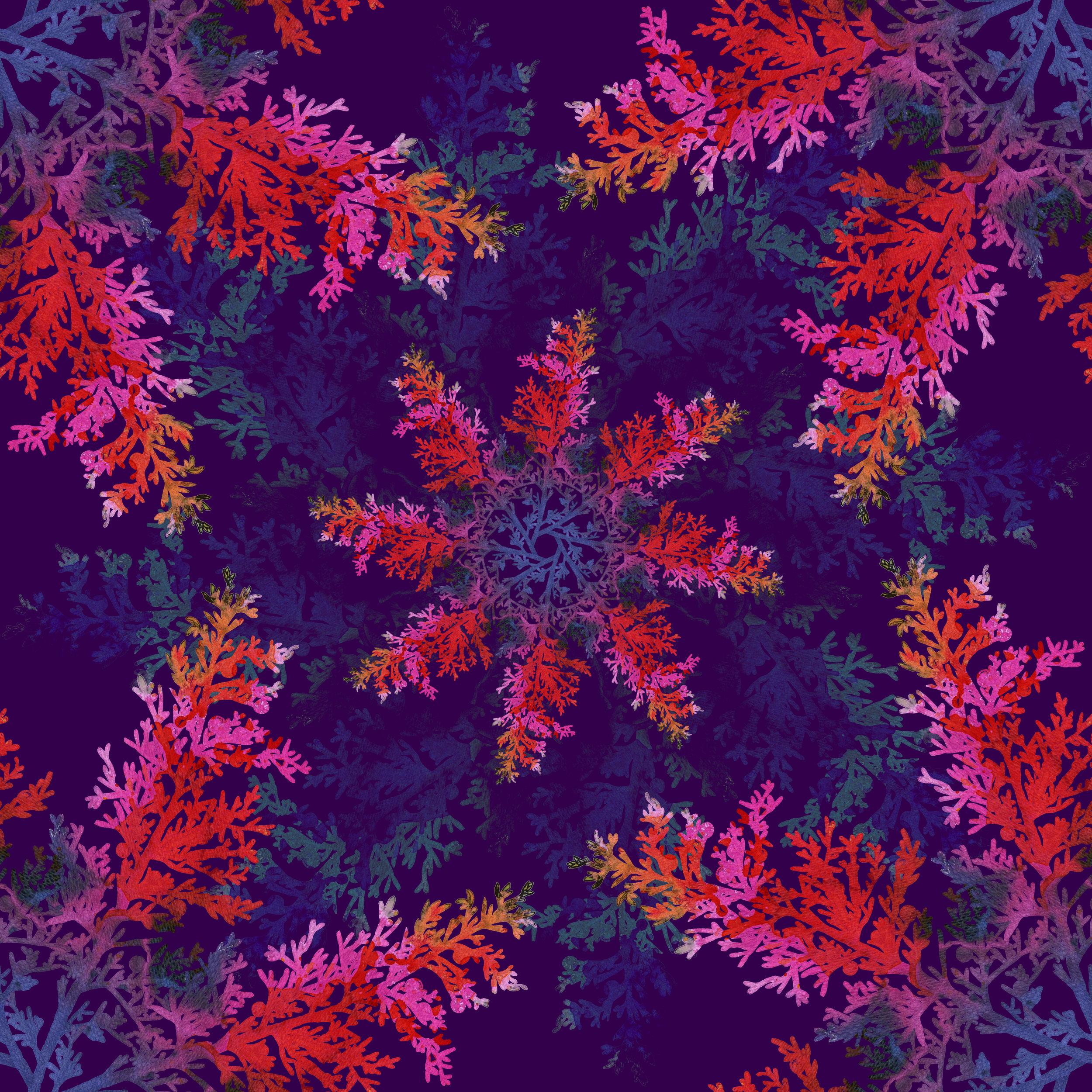Cedar Print v2.jpg