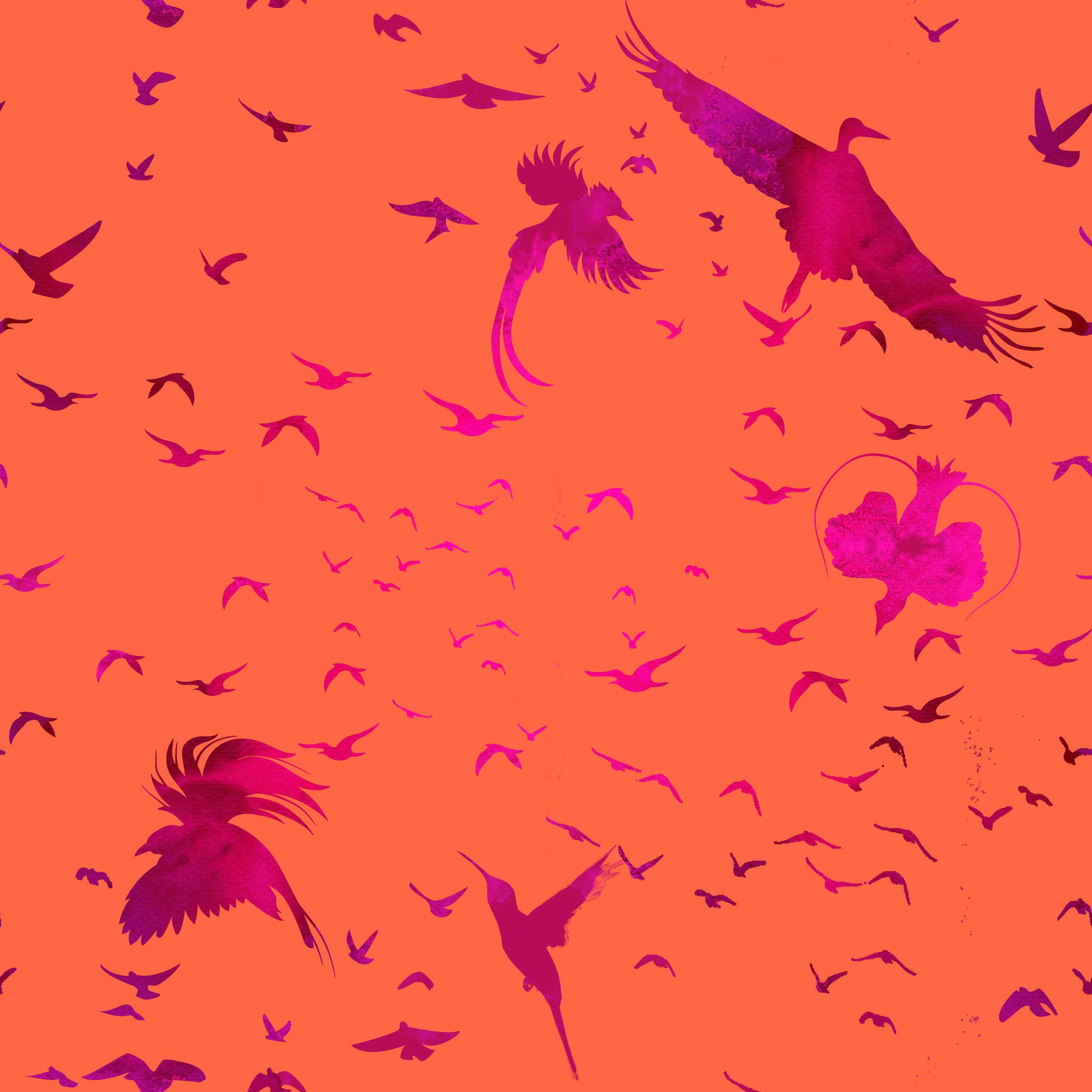 Birds v2.jpg