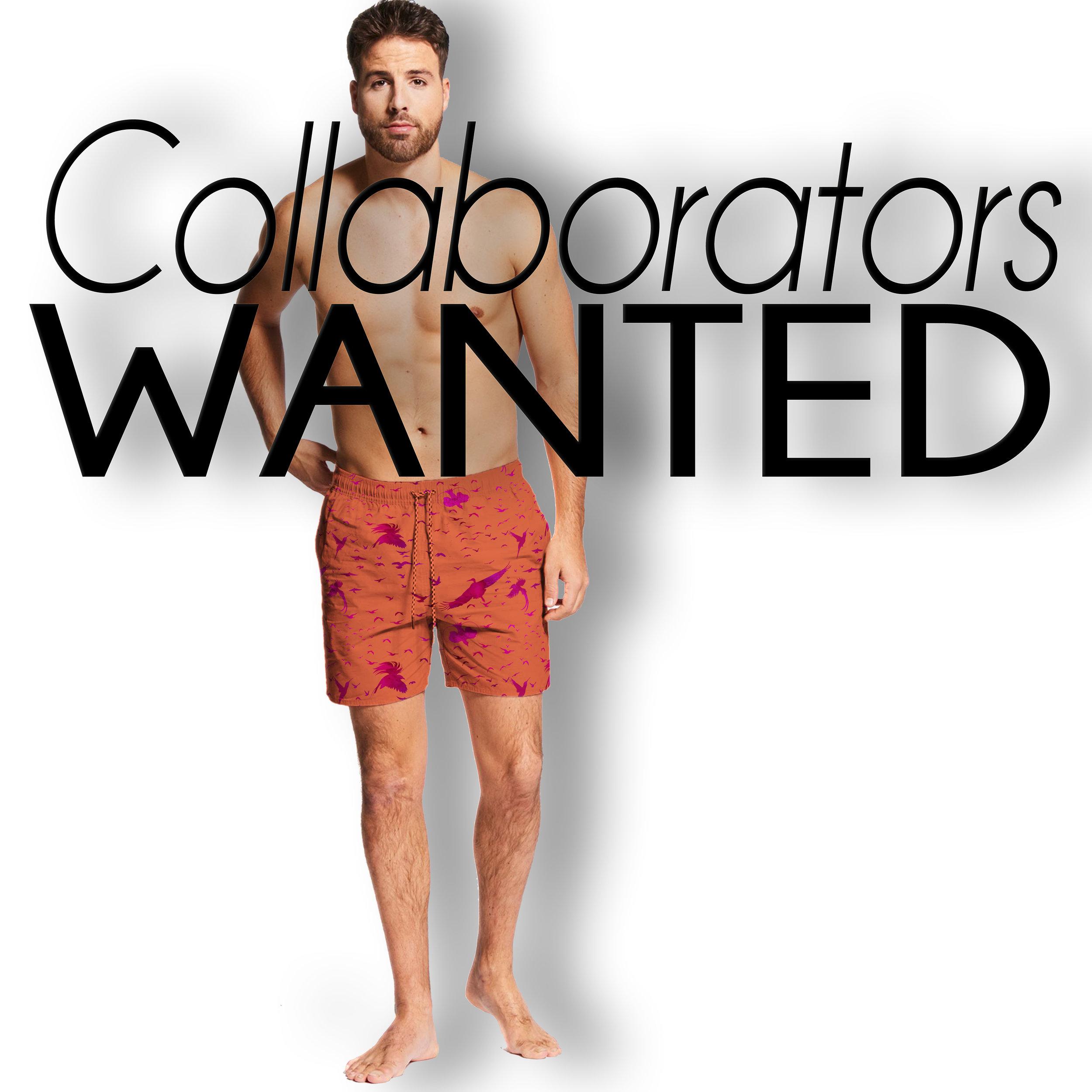 Collaborators Skies.jpg