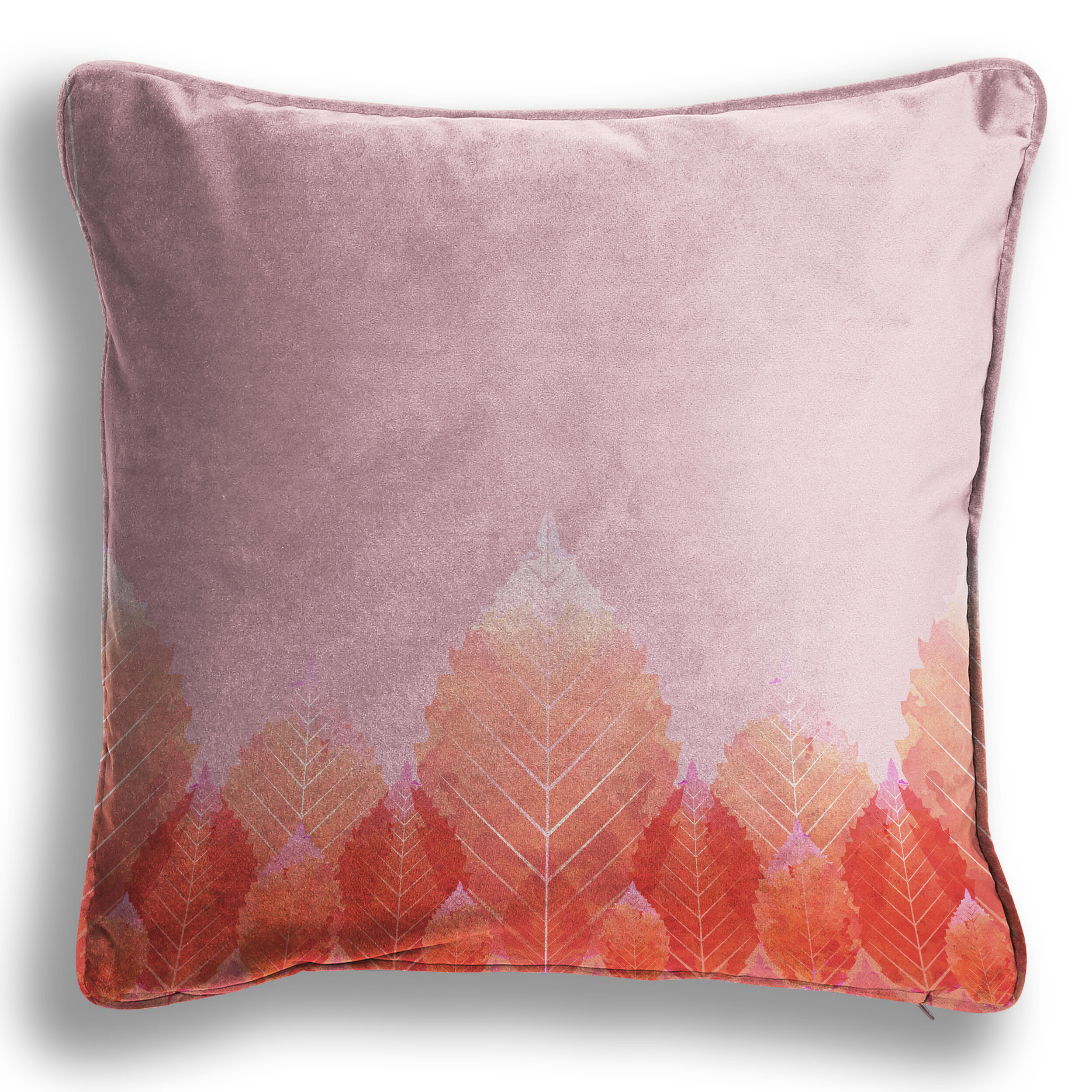 Blush Beech Cushion