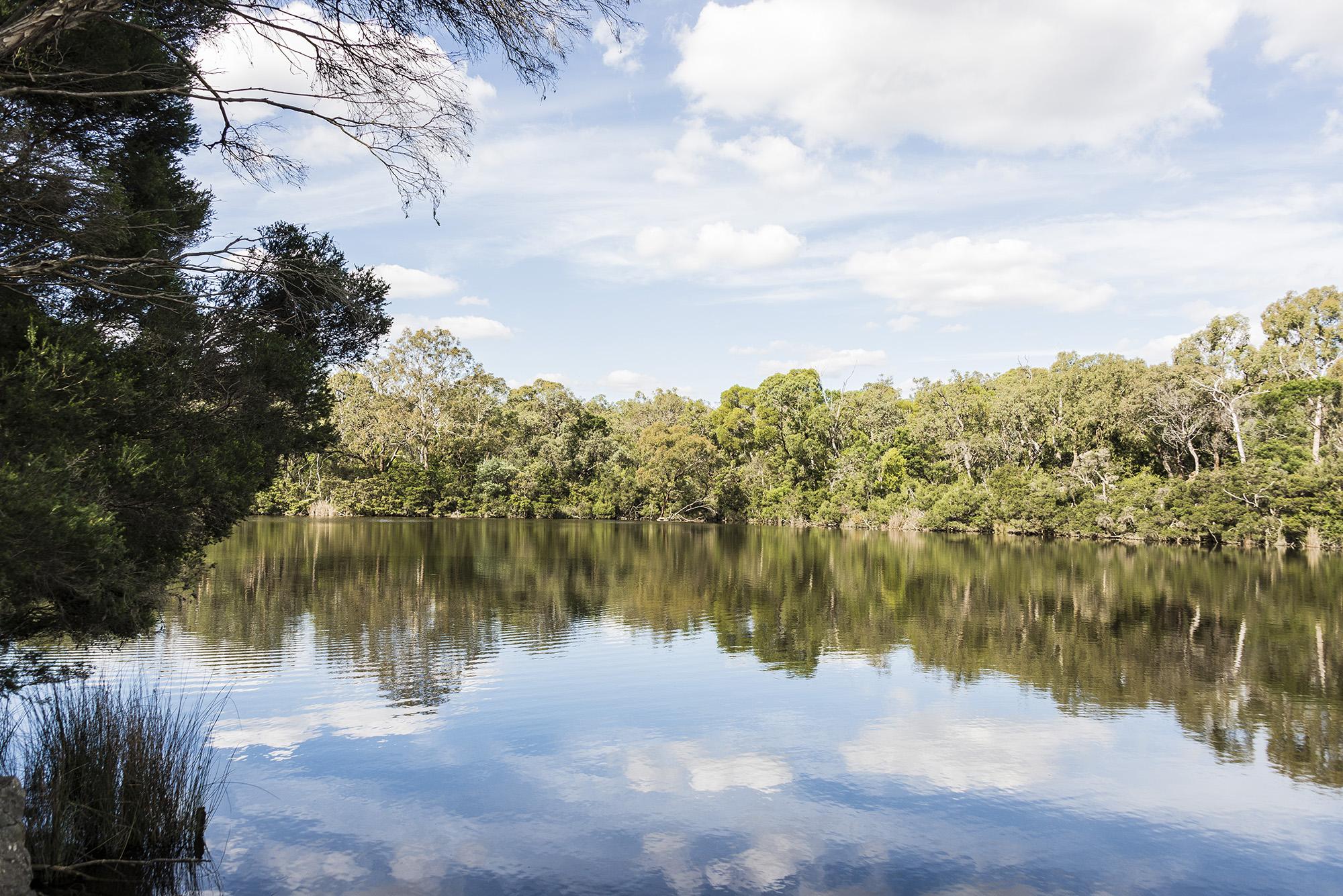 Blackburn Lake Sanctury