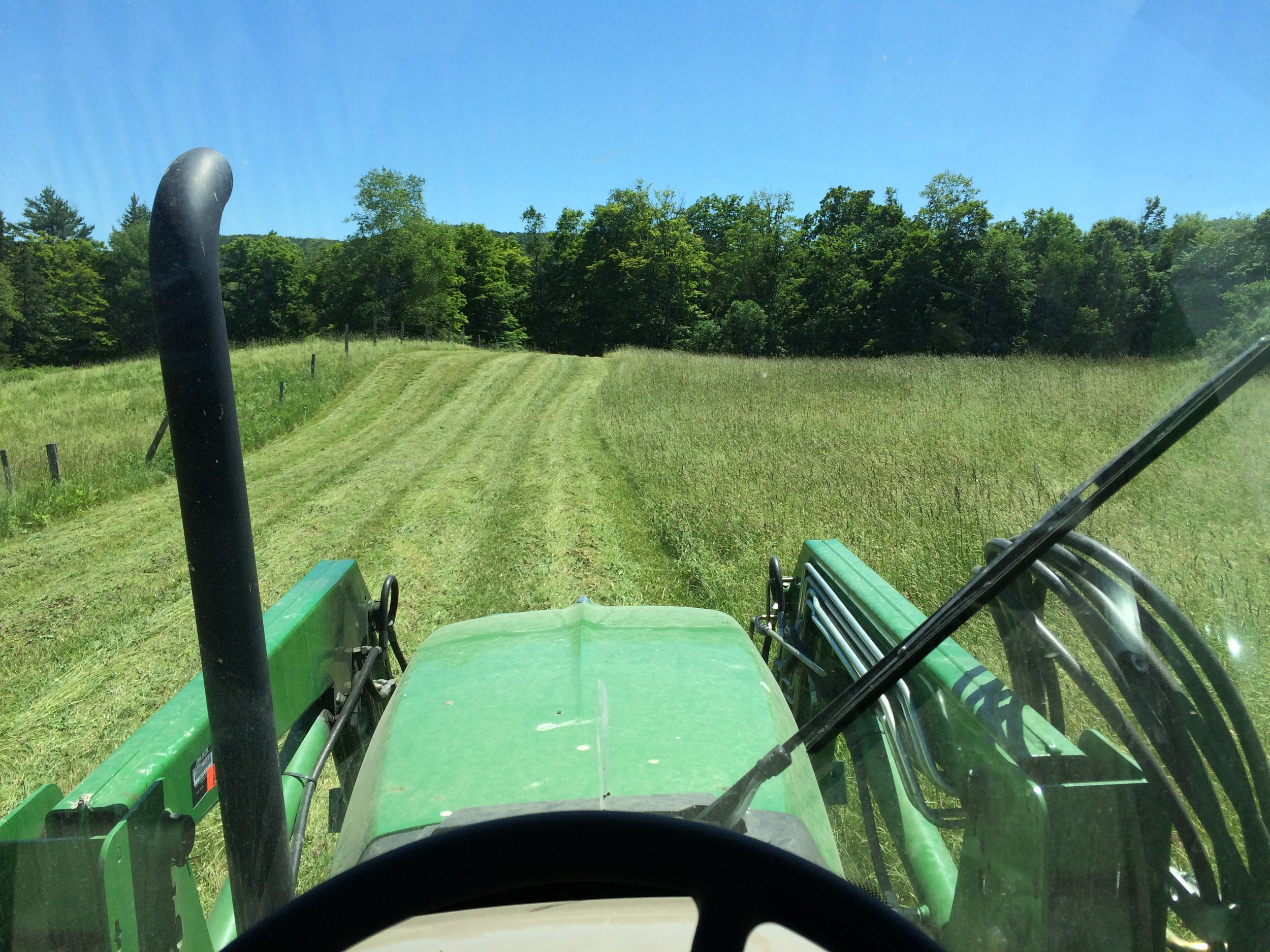 So we mow down the hay fields in summer.