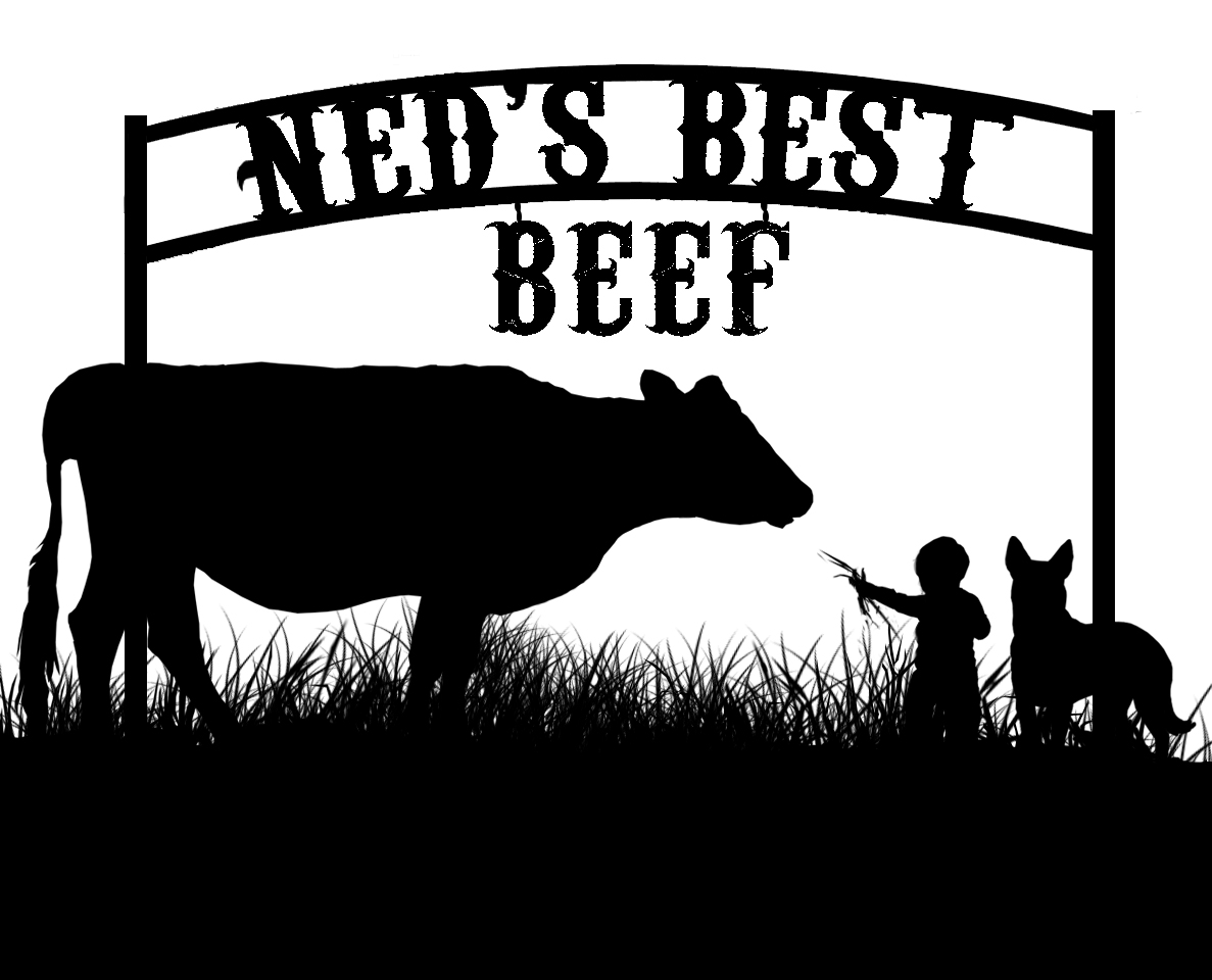 Ned_2g_less black.jpg