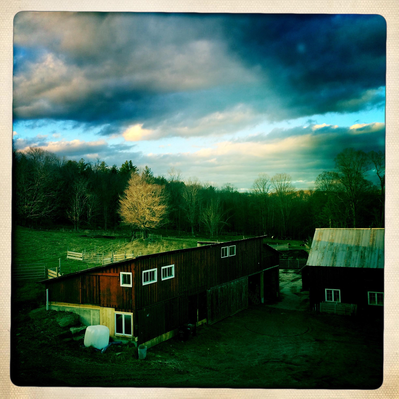 Barns aerial lit tree-001.JPG