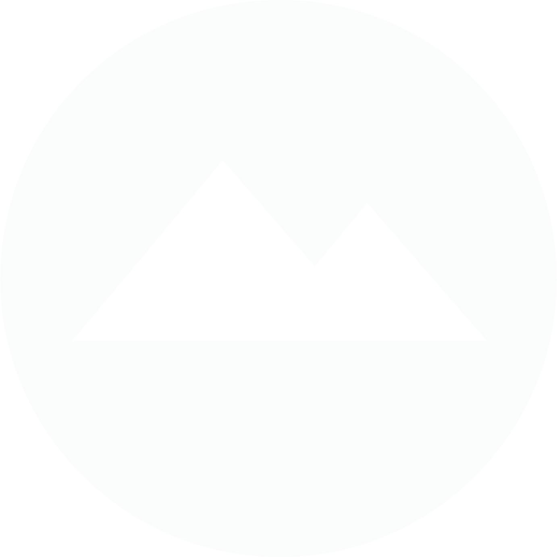 SSC white logo.png