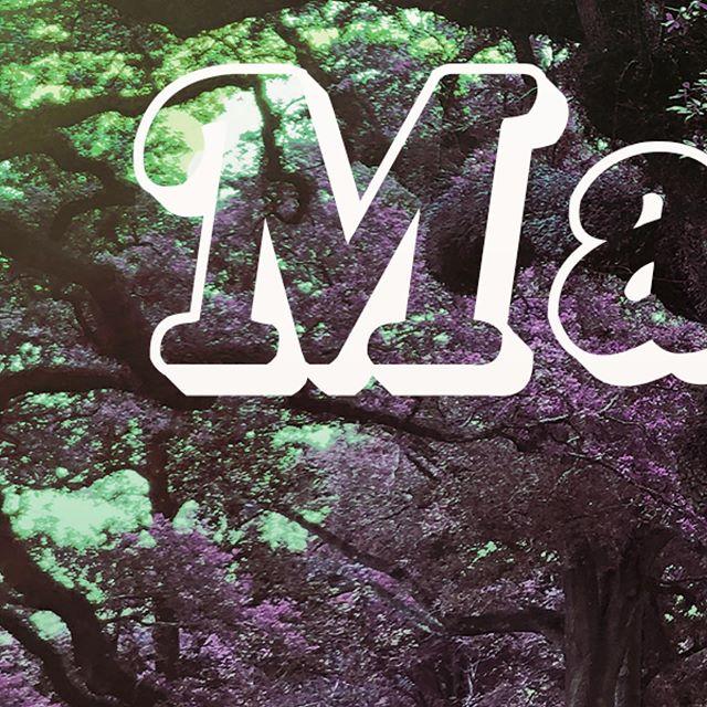 Magnolia Coming 10/10 to all platforms.  #new #newyork #newmusic #vacherie #oakalleyplantation #lemonade #blues #acoustic #folk