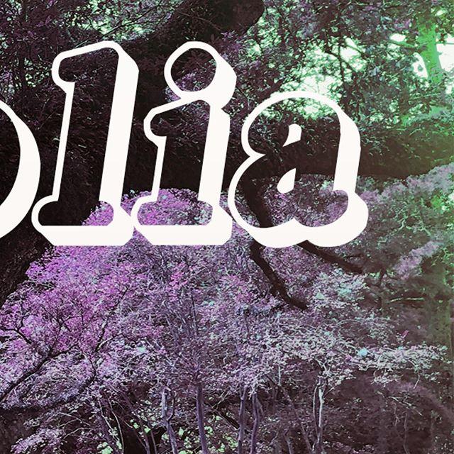 I wrote a song on a plantation in Louisiana.  #new #newyork #newmusic #vacherie #oakalleyplantation #lemonade #blues #acoustic #folk