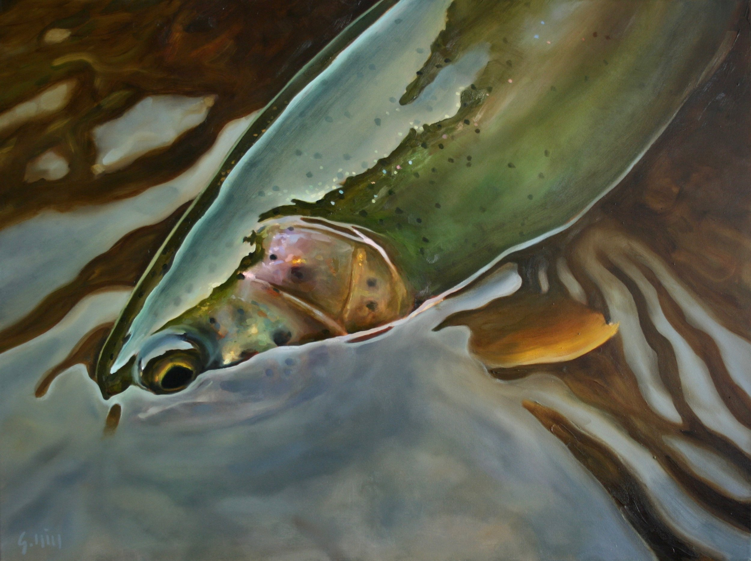 "RAINBOW TROUT NOCTURNE  OIL ON CANVAS II 30 x 40"" II  AVAILABLE AT CREIGHTON BLOCK"