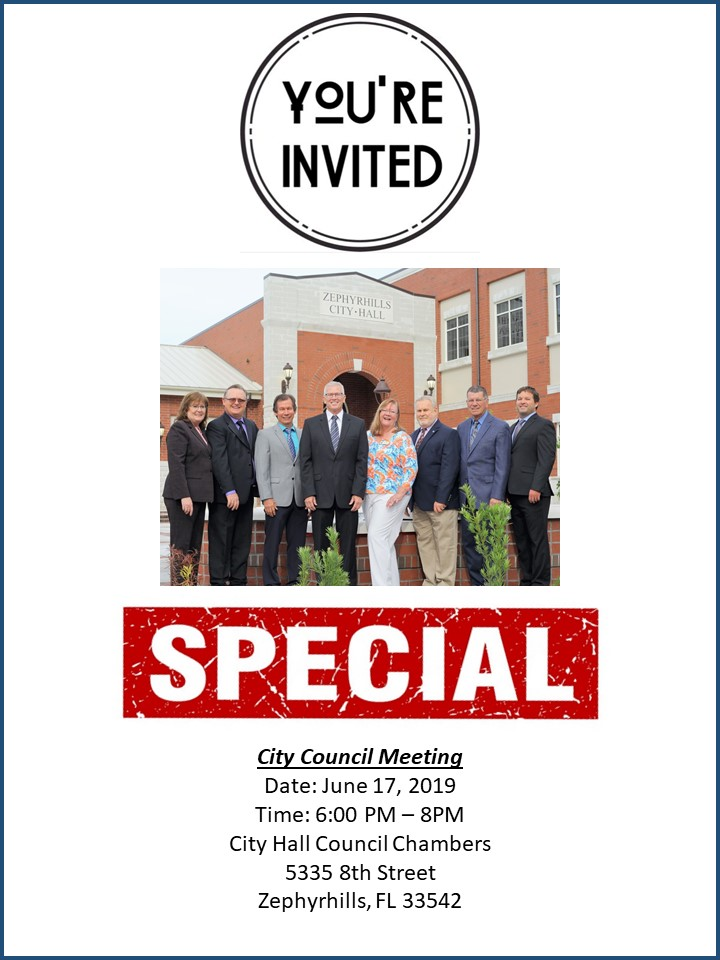 Special City Council Meeting 190617.jpg