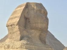 Sphinx by Erika Mermuse